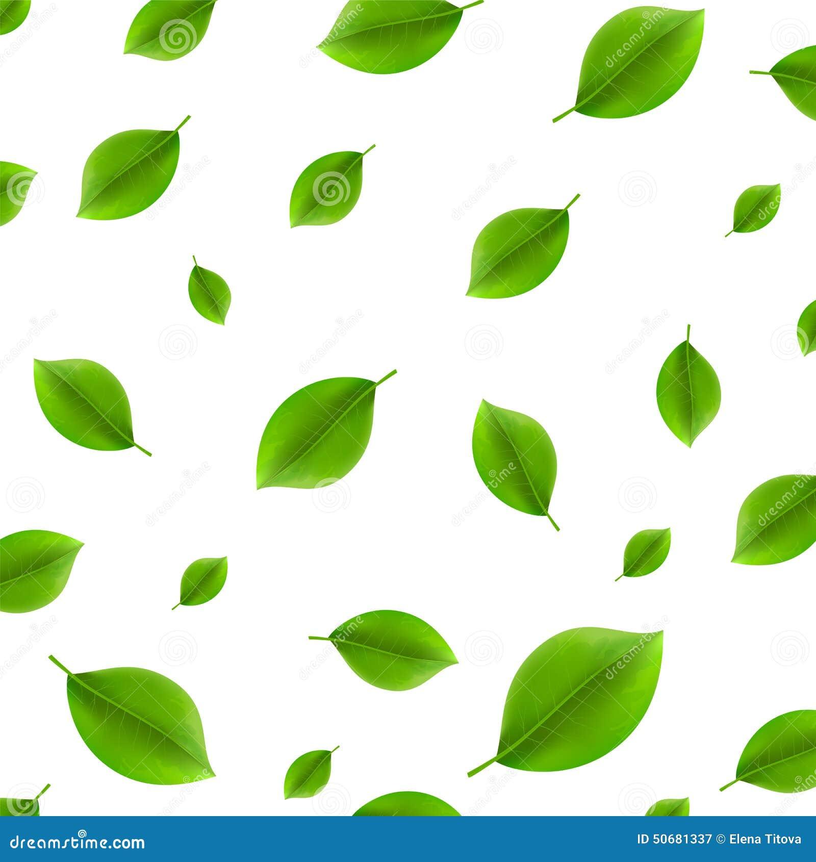 Download 绿色叶子 向量例证. 插画 包括有 季节, 颜色, 没人, 设计, 夏天, 生气勃勃, 创造性, 自然, 要素 - 50681337