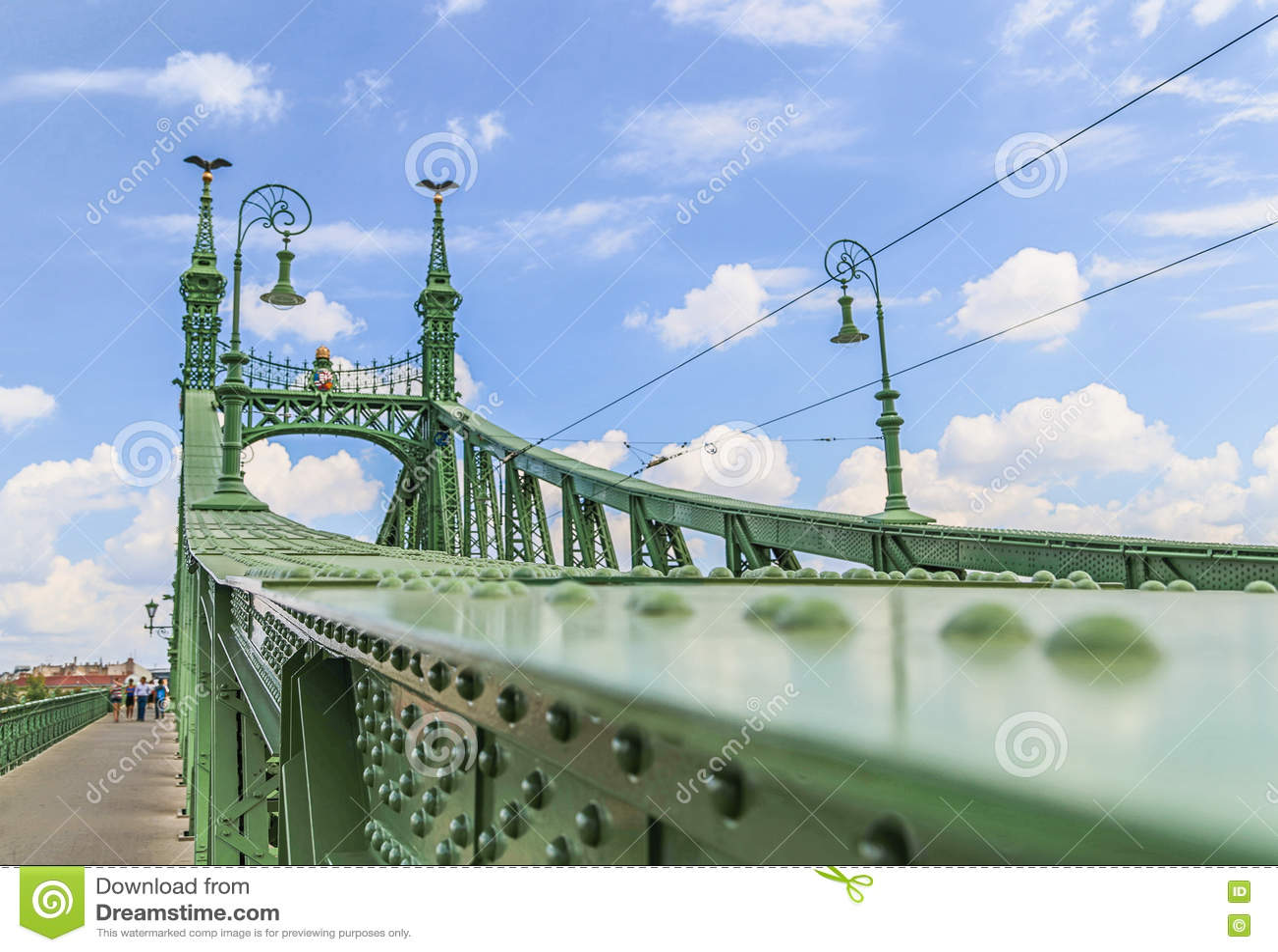 绿色自由桥梁在布达佩斯