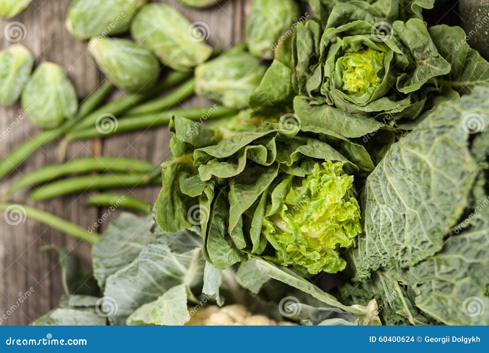 绿色菜的分类
