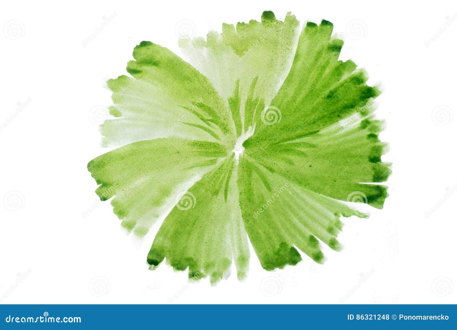 绿色水彩摘要手工制造圈子