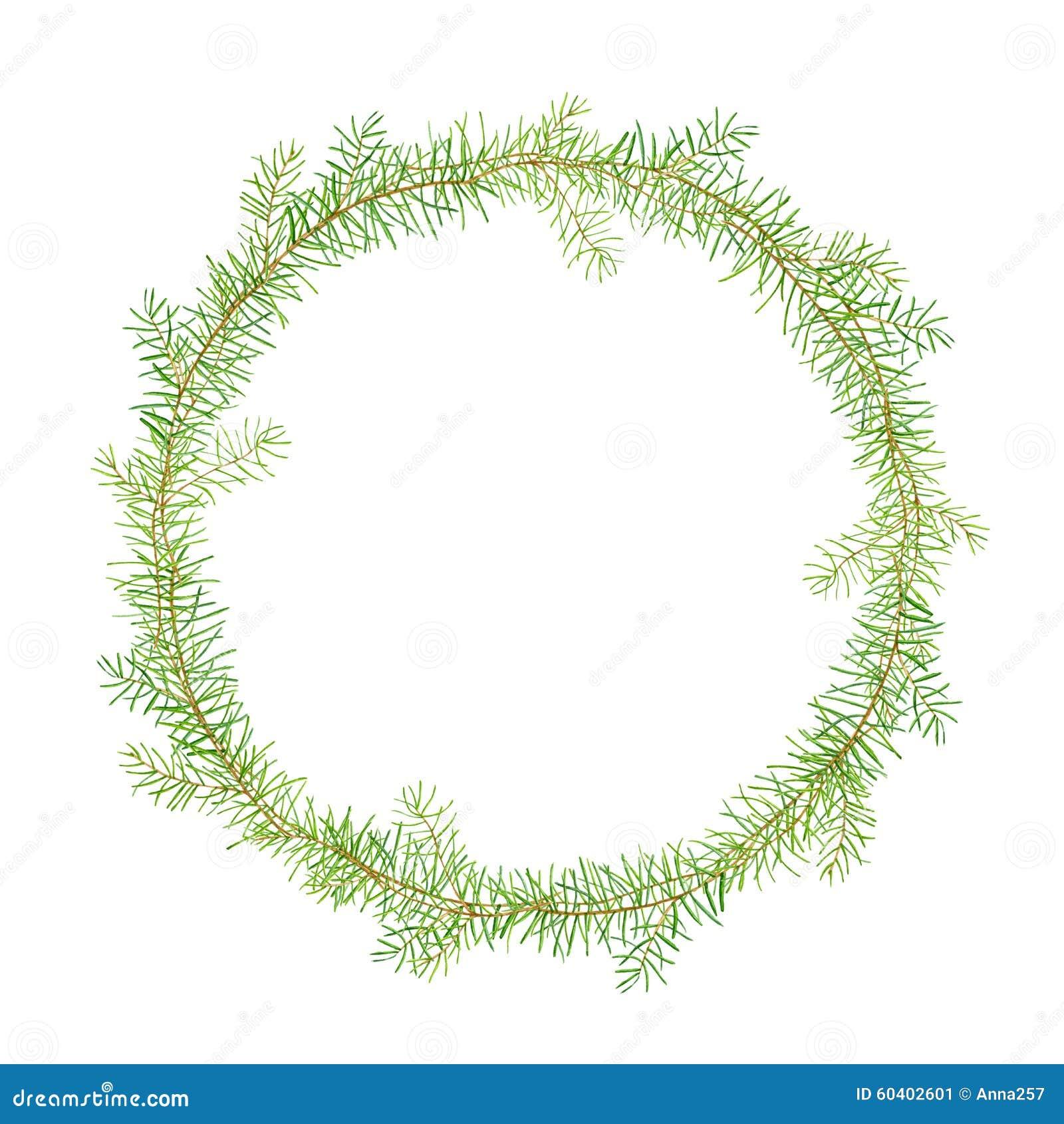 绿色水彩框架杉木分支