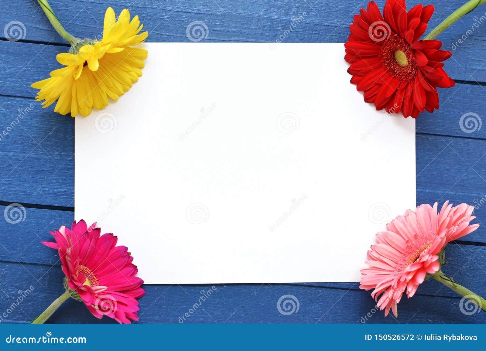 艺术品的嘲笑庆祝、图画和文本的在蓝色木背景与四根色的花大丁草 ??