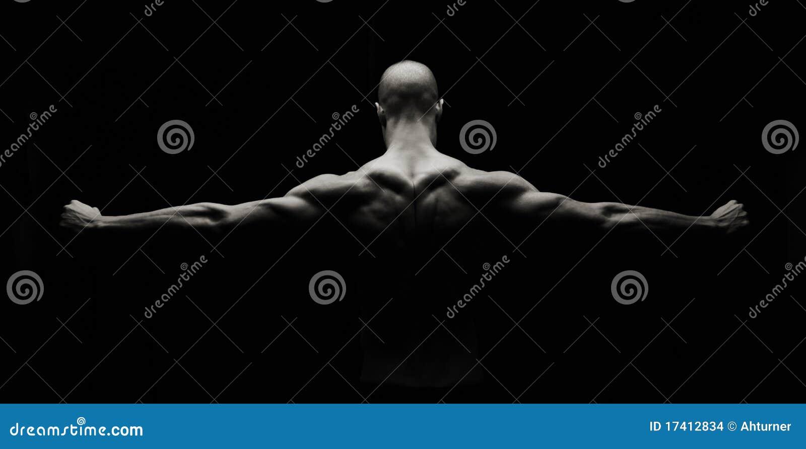 艺术性的健身
