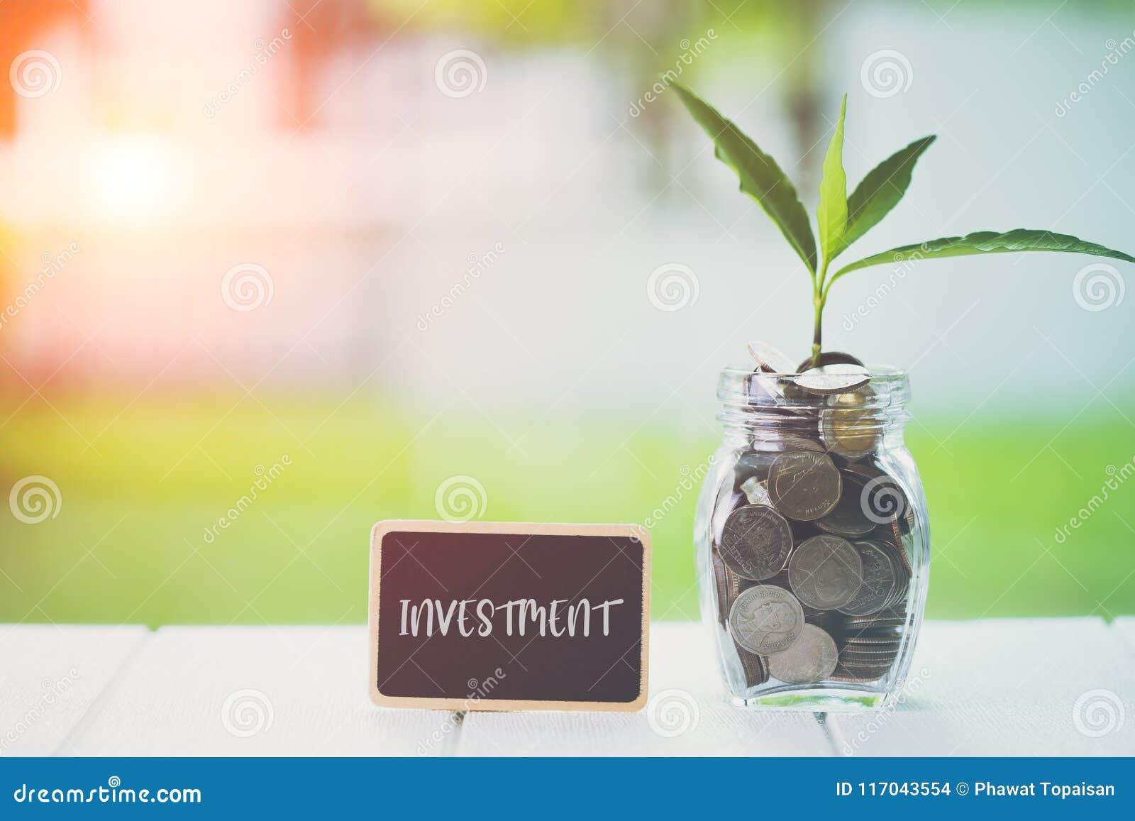 节约金钱和投资财政概念 种植生长在与文本投资的储款硬币在木的小广告牌