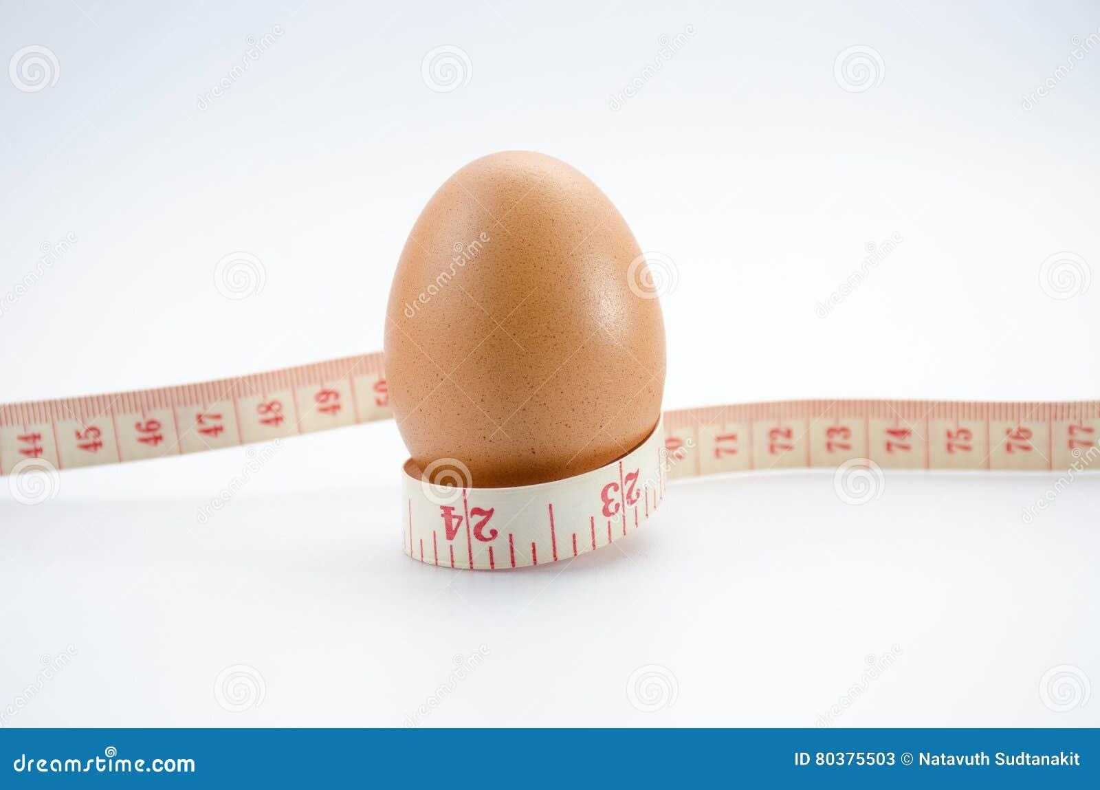 节食的鸡蛋