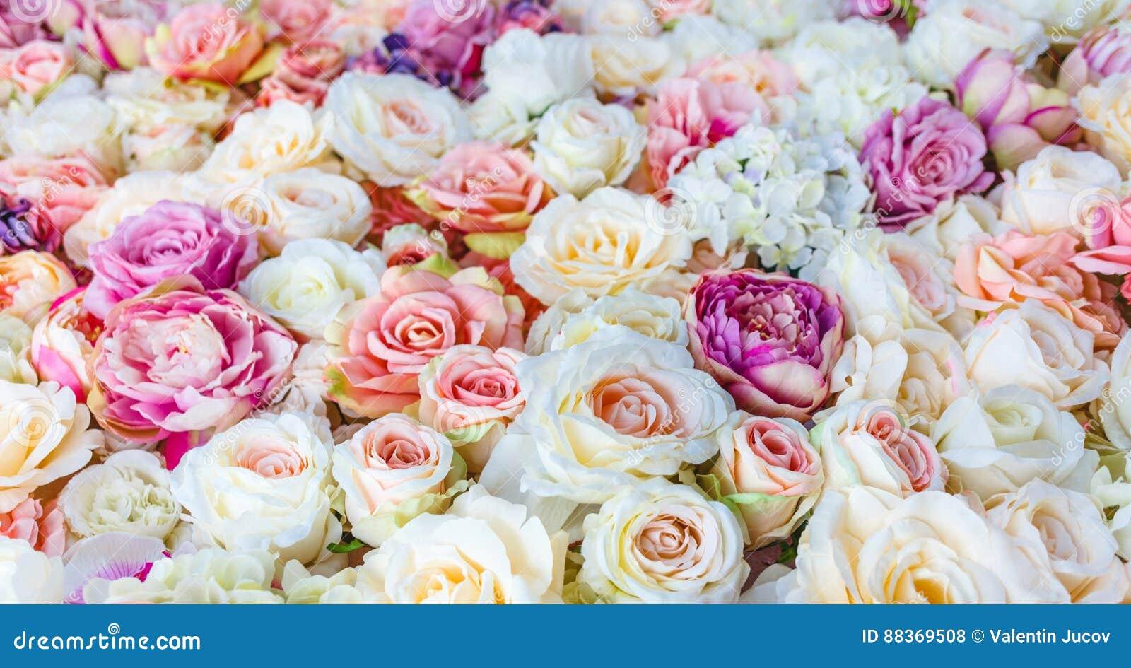 花与使红色和白玫瑰,婚姻的装饰惊奇的墙壁背景,