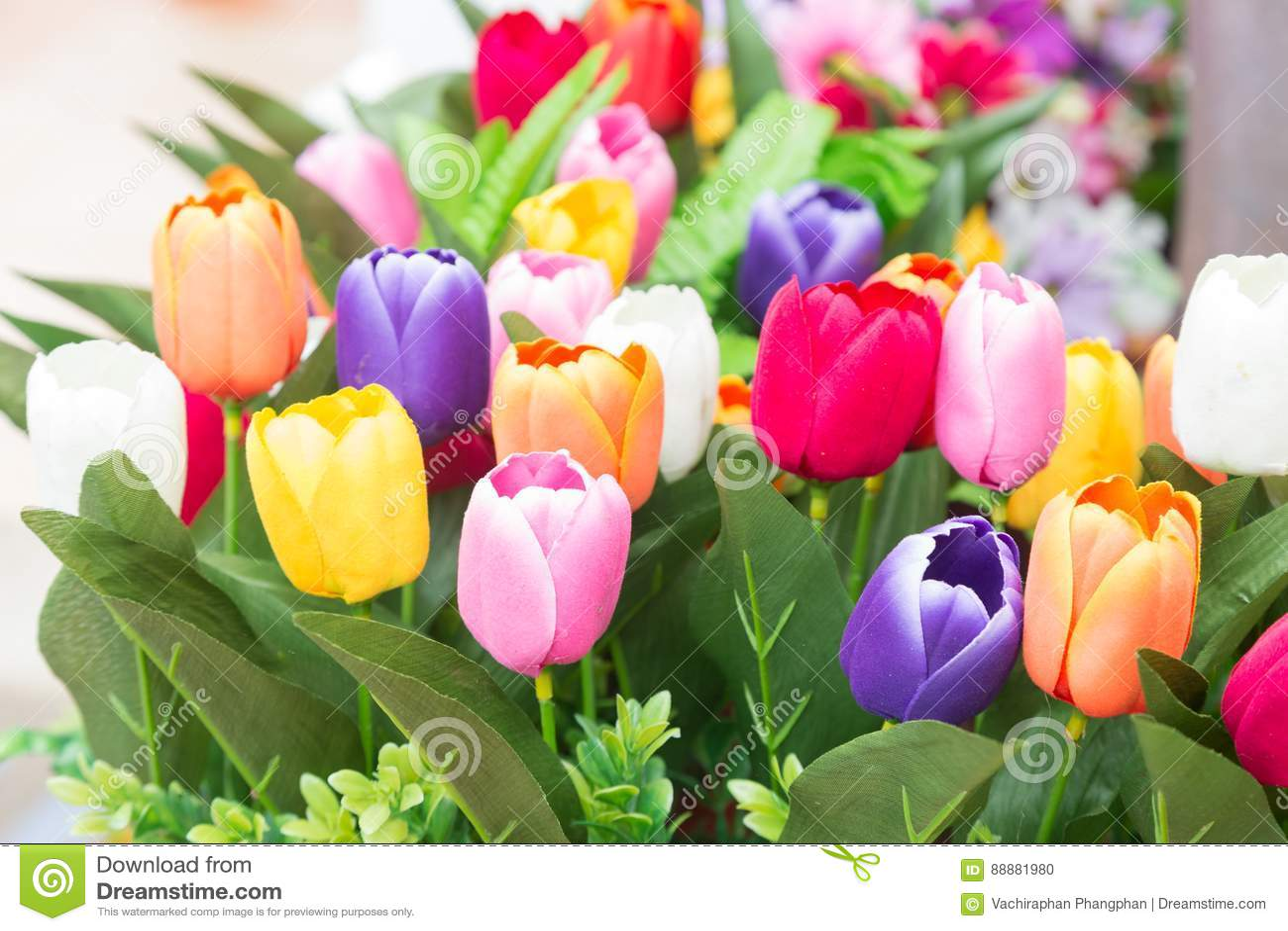 花五颜六色的花束