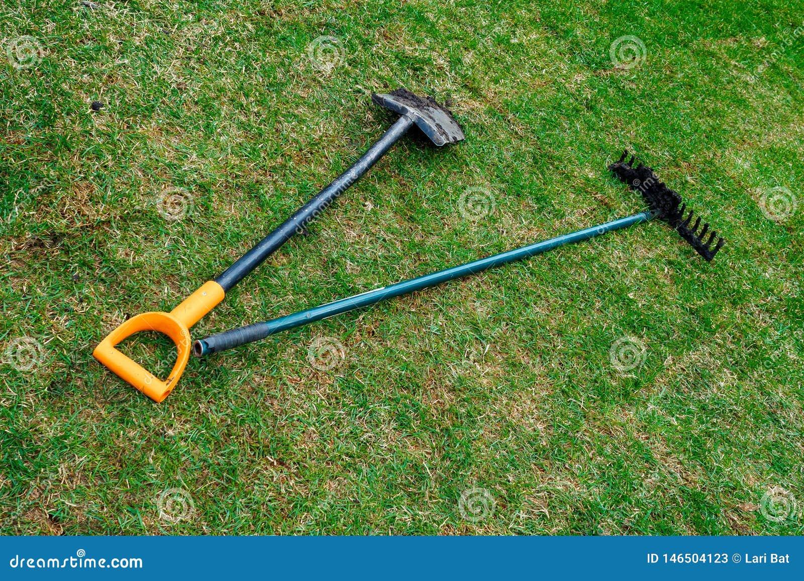 花匠的肮脏的铁锹和犁耙在新鲜的滚动的草坪说谎