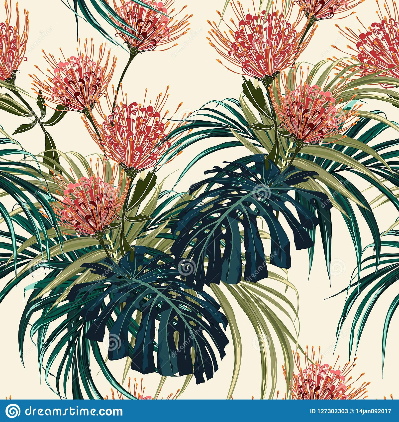 花卉无缝的传染媒介热带样式,春天与异乎寻常的普罗梯亚木的夏天背景开花,棕榈叶