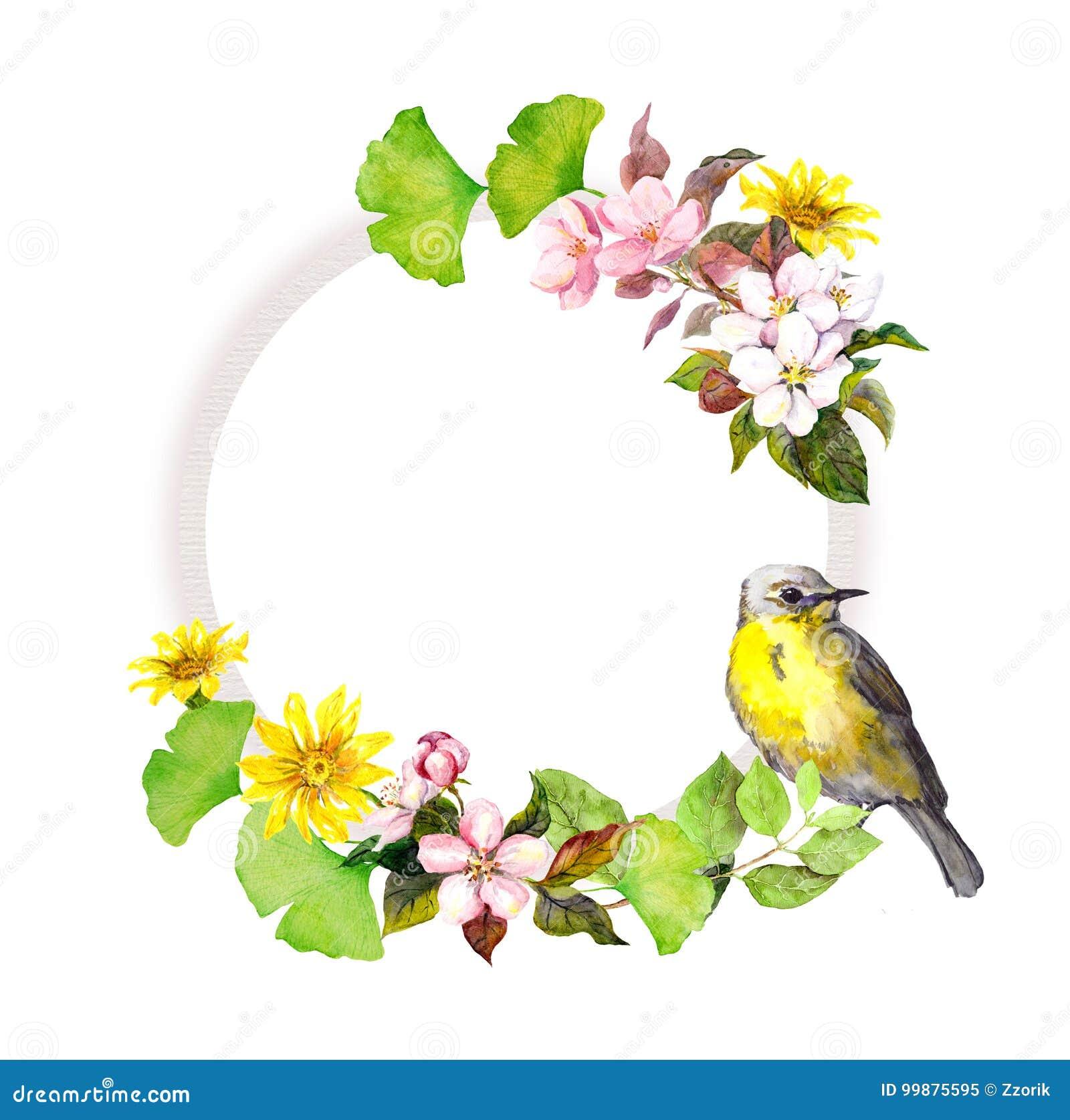 花卉花圈-花和鸟 框架来回水彩