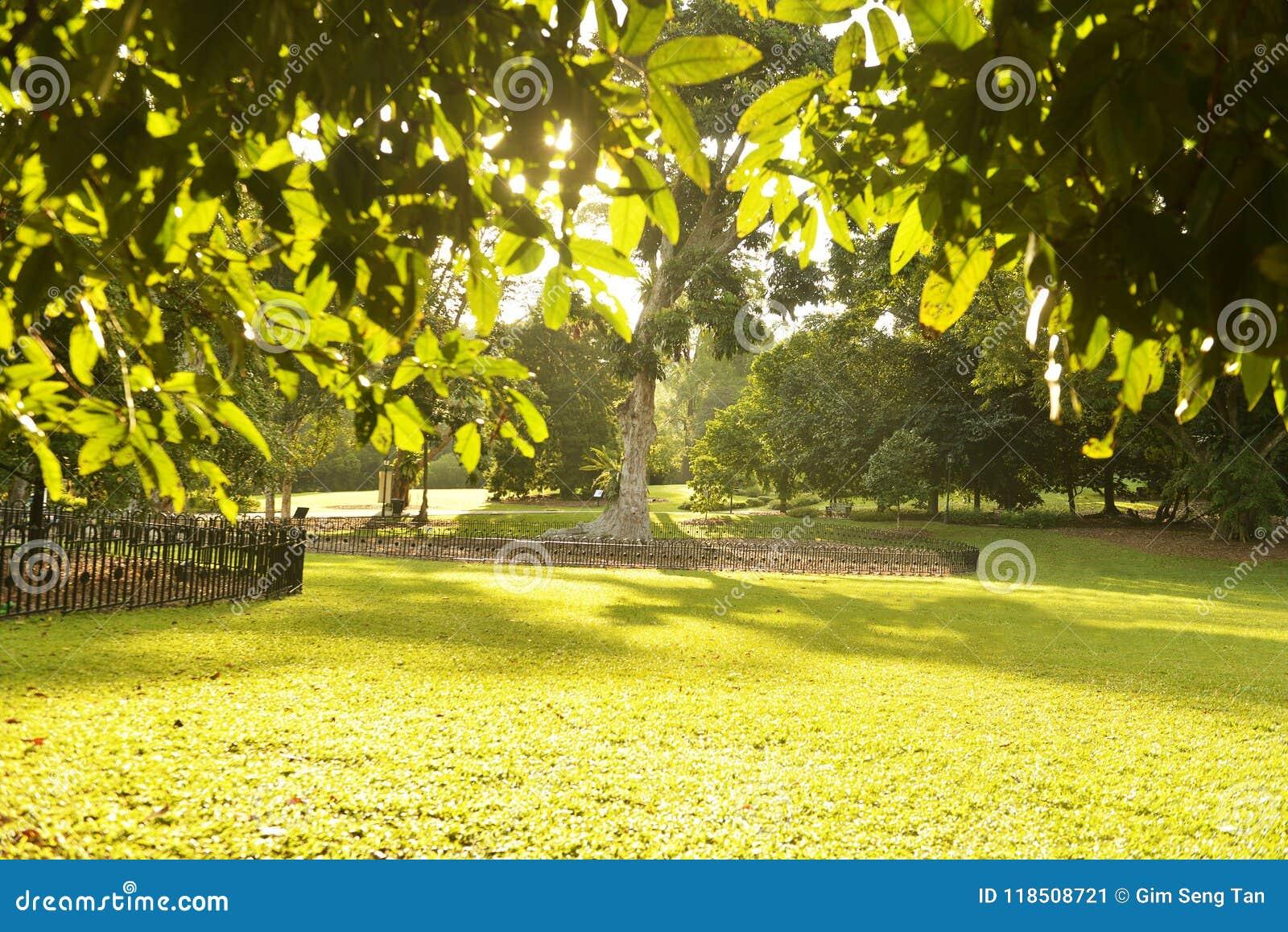 花园城市系列