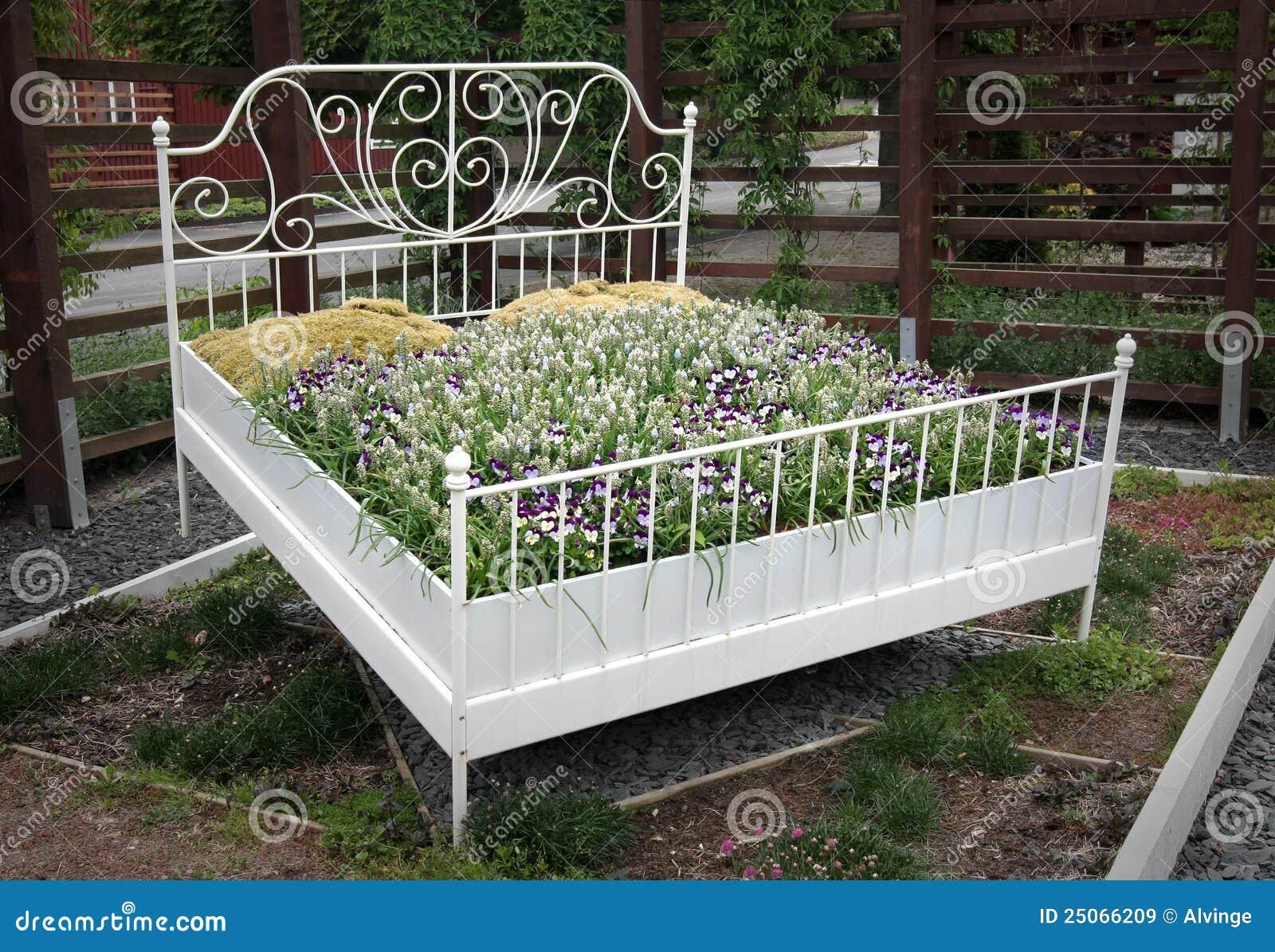 不同, 梦想, 异乎寻常, 植物群, 花卉, 花, 花圃, 框架, 家具, 庭院图片