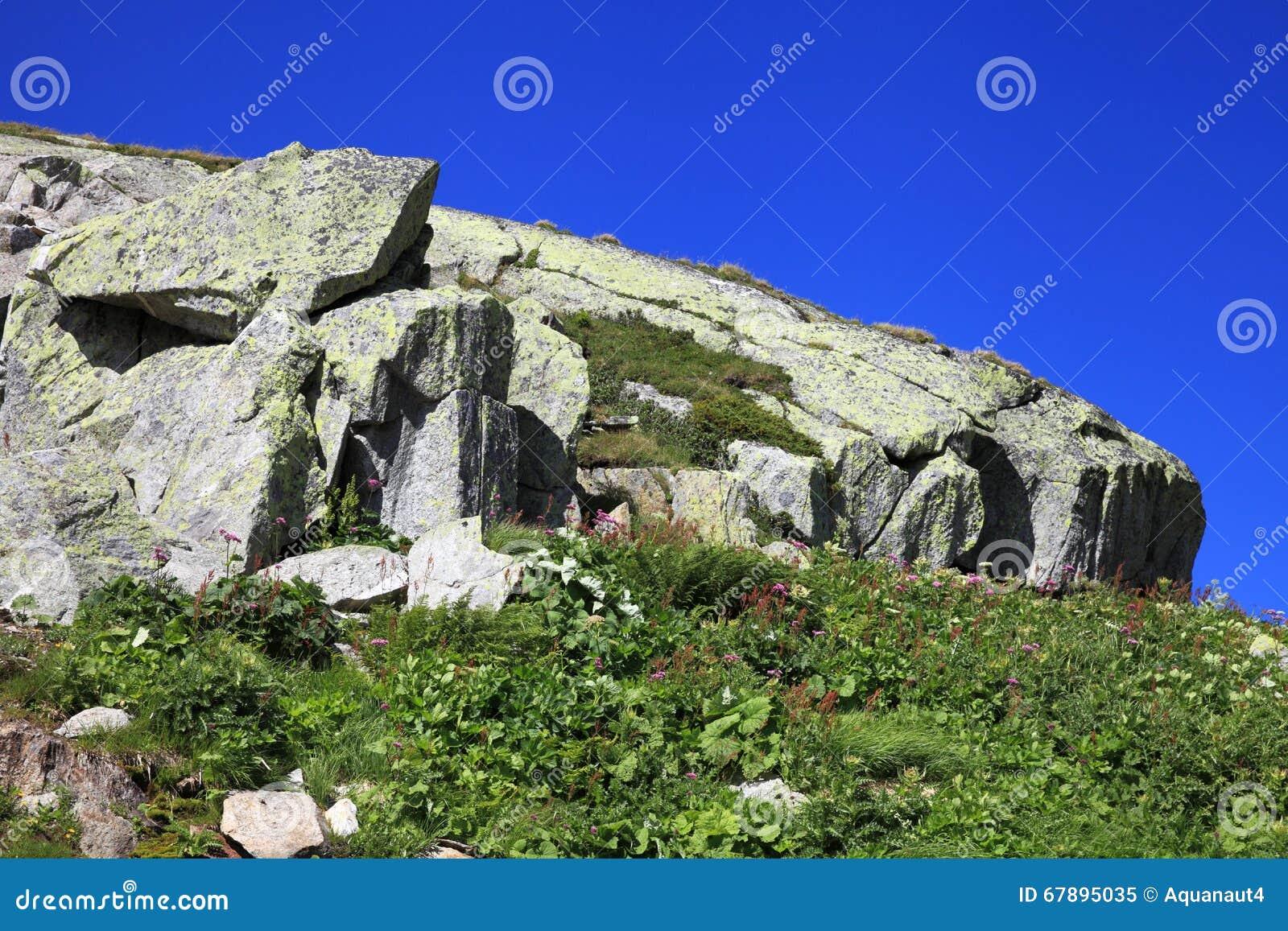 花岗岩岩石