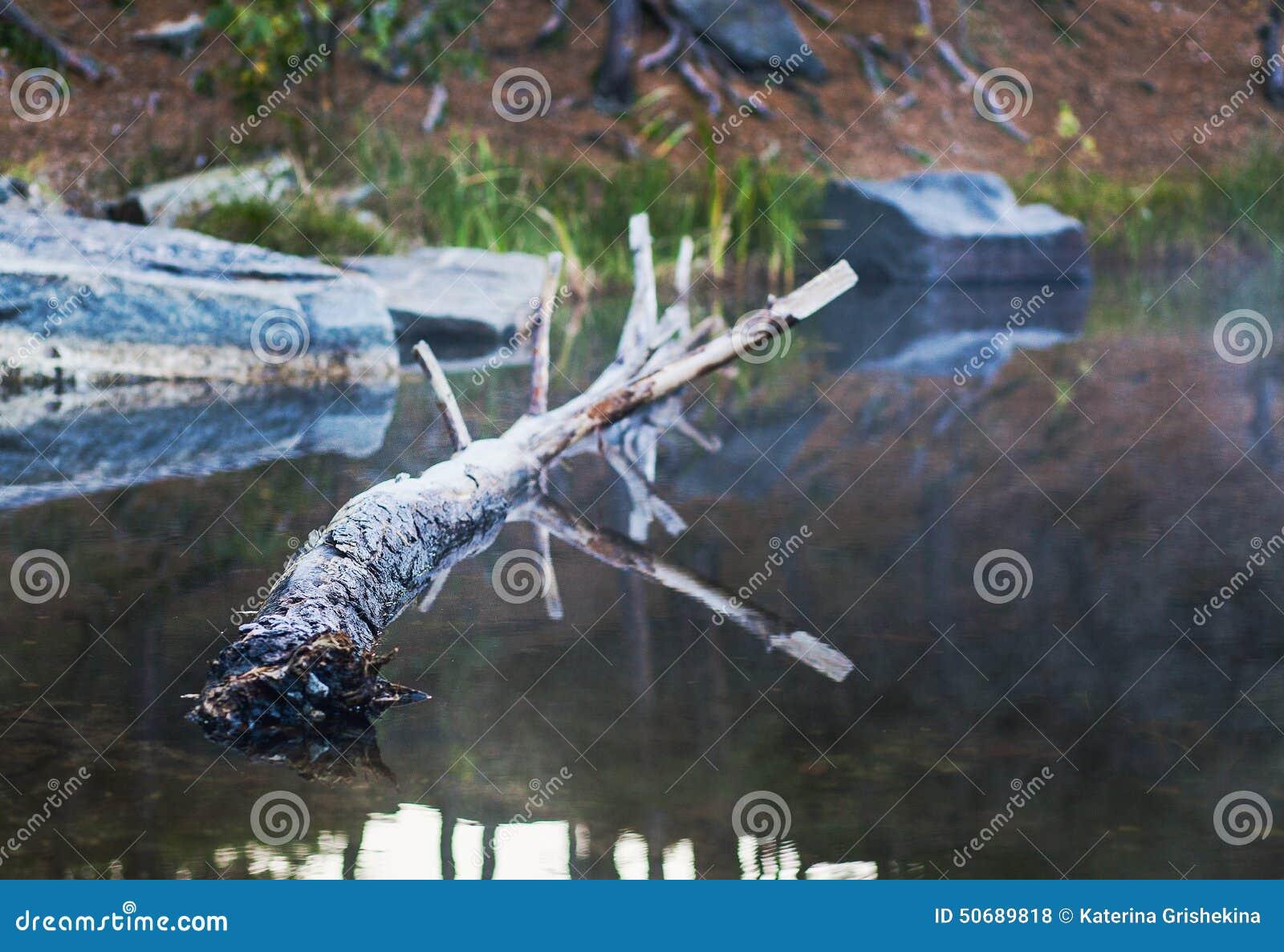 Download 花岗岩猎物 库存照片. 图片 包括有 薄雾, 安静, 早晨, 有历史, 微积分, 环境, 绿色, 影响, 开放 - 50689818
