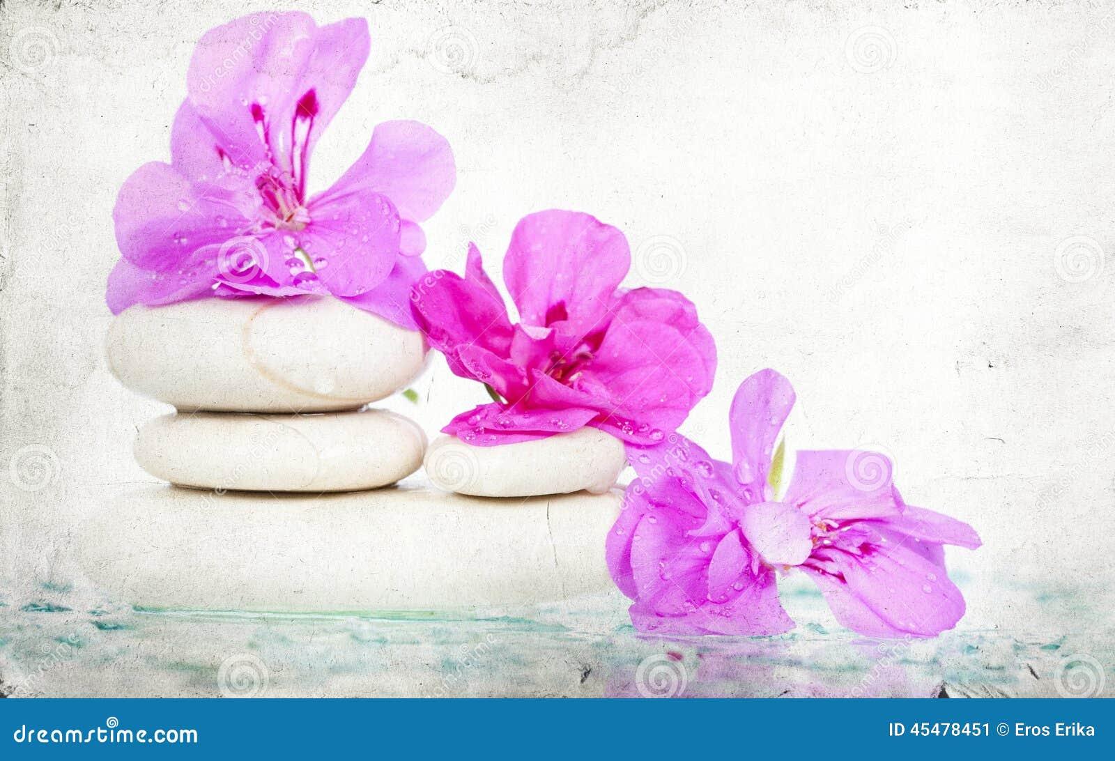花桃红色温泉石头