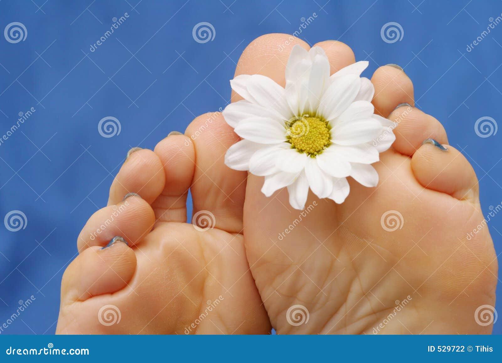 Download 英尺 库存照片. 图片 包括有 关心, 蓝色, 脚趾, 新鲜, 关闭, beauvoir, 健康, 鞋底, 虚拟 - 529722