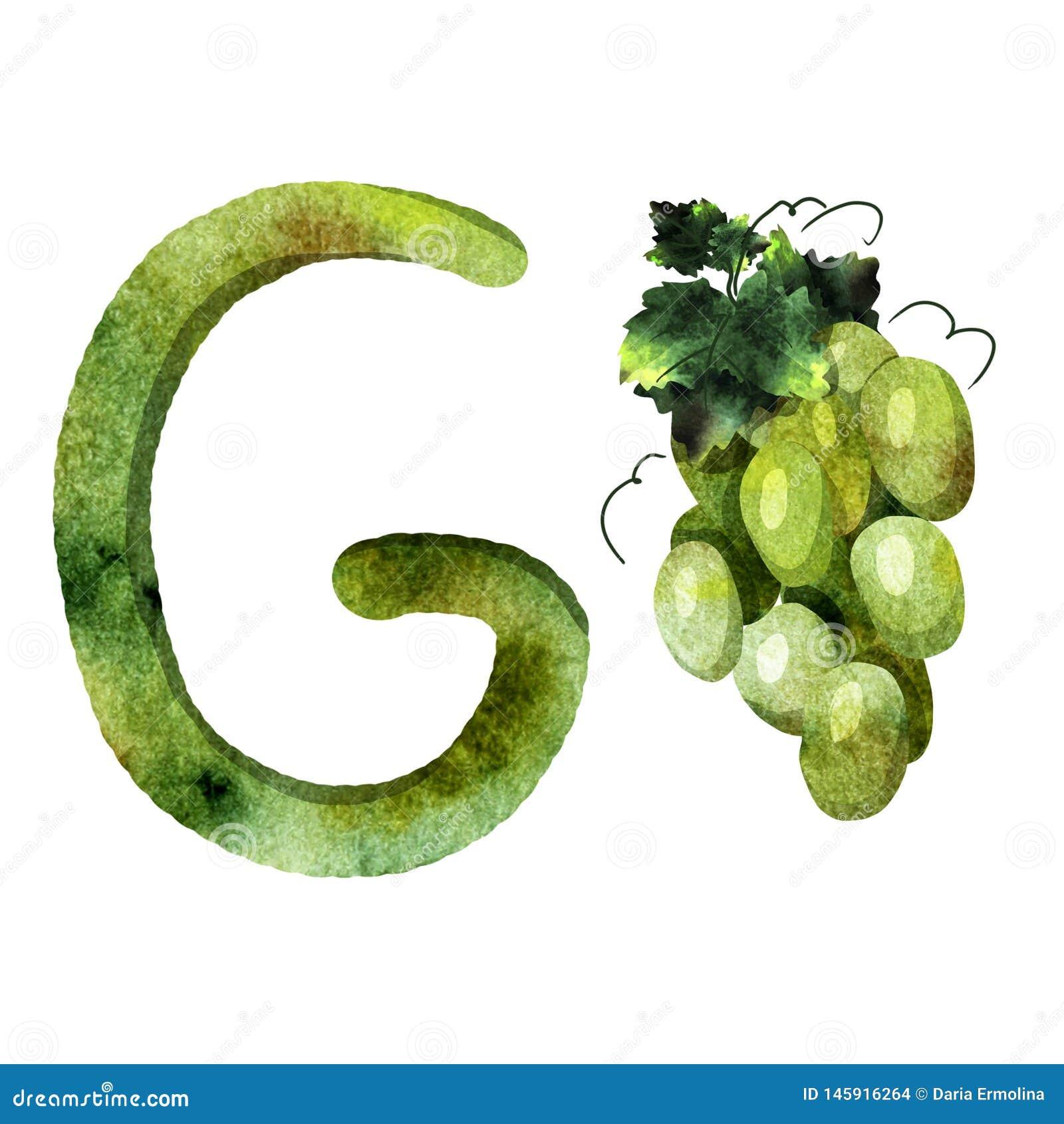 英语字母表信件g