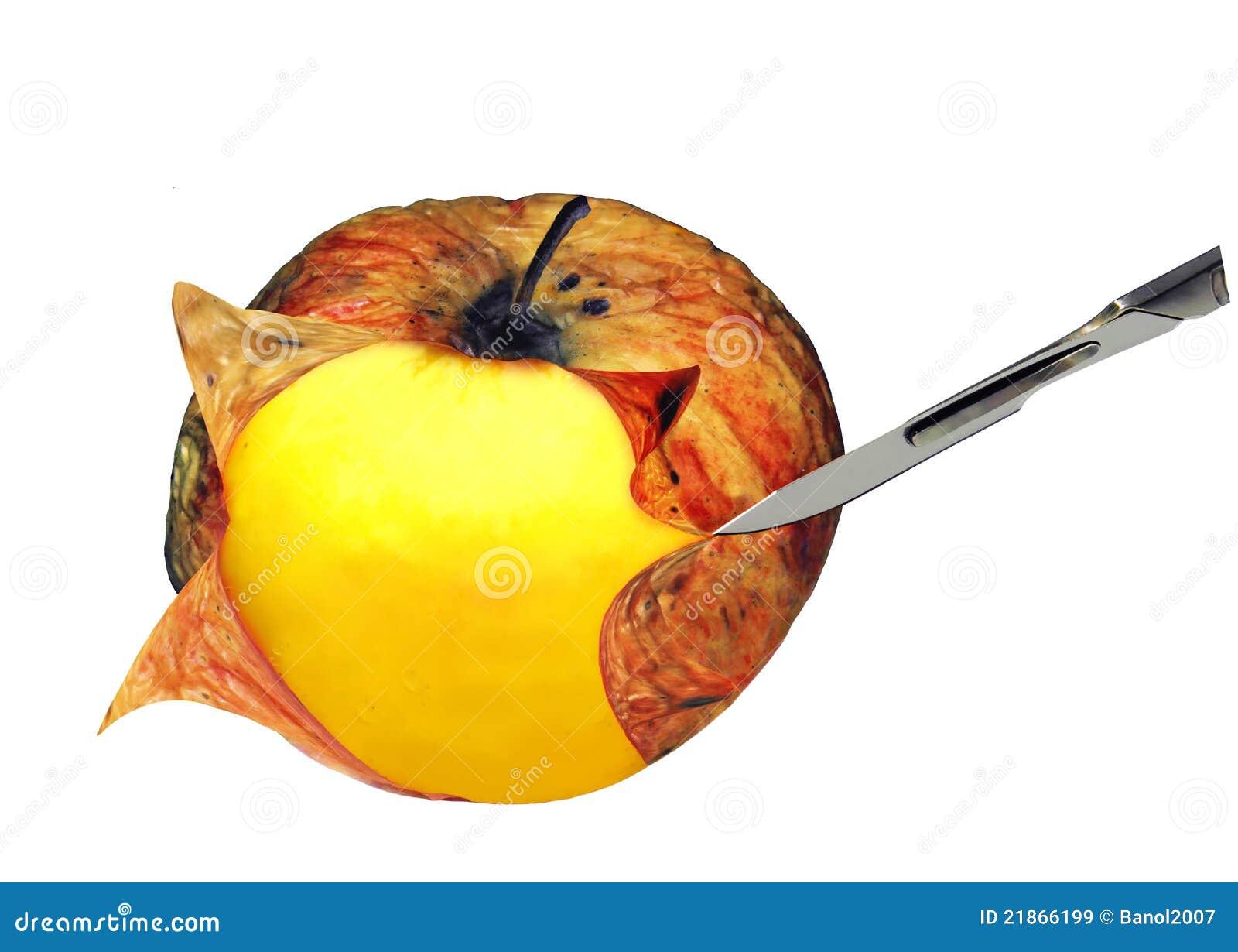 苹果概念查出解剖刀手术