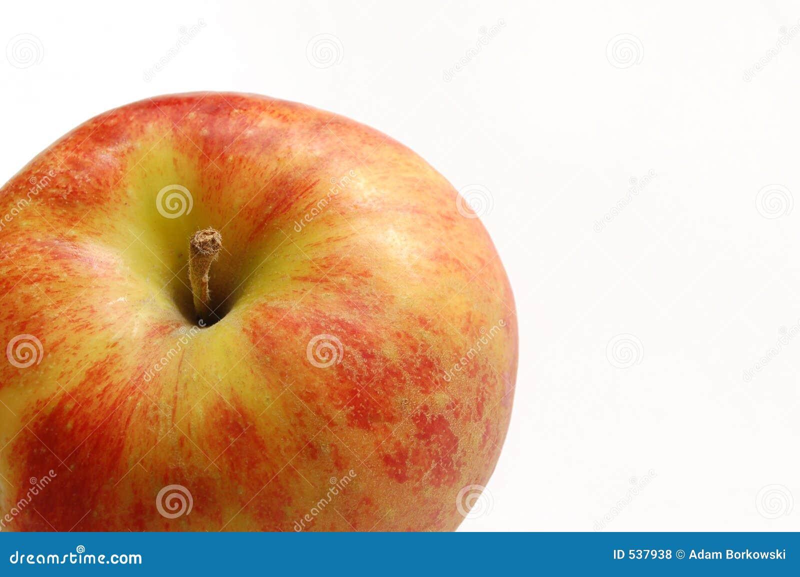 Download 苹果红色 库存照片. 图片 包括有 孩子, 冰箱, 健康, 酥脆, 五颜六色, 加法器, 背包, 食物, 制动手 - 537938