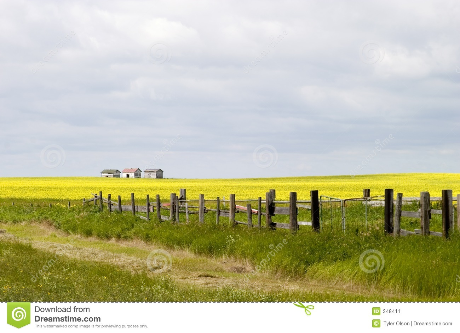 范围横向线路大草原