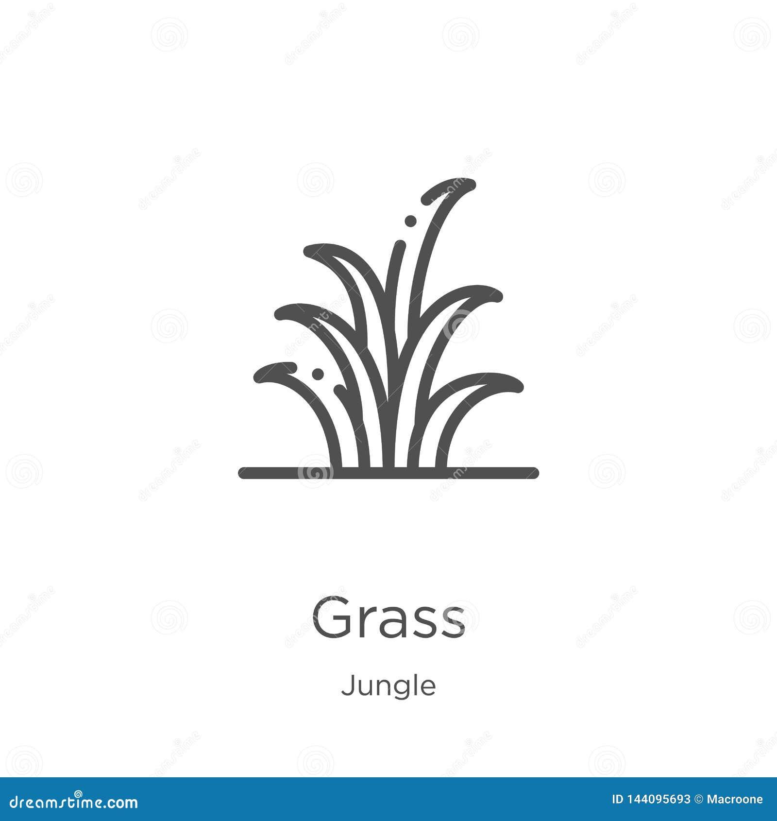 草从密林汇集的象传染媒介 稀薄的线草概述象传染媒介例证 概述,稀薄的线草象为