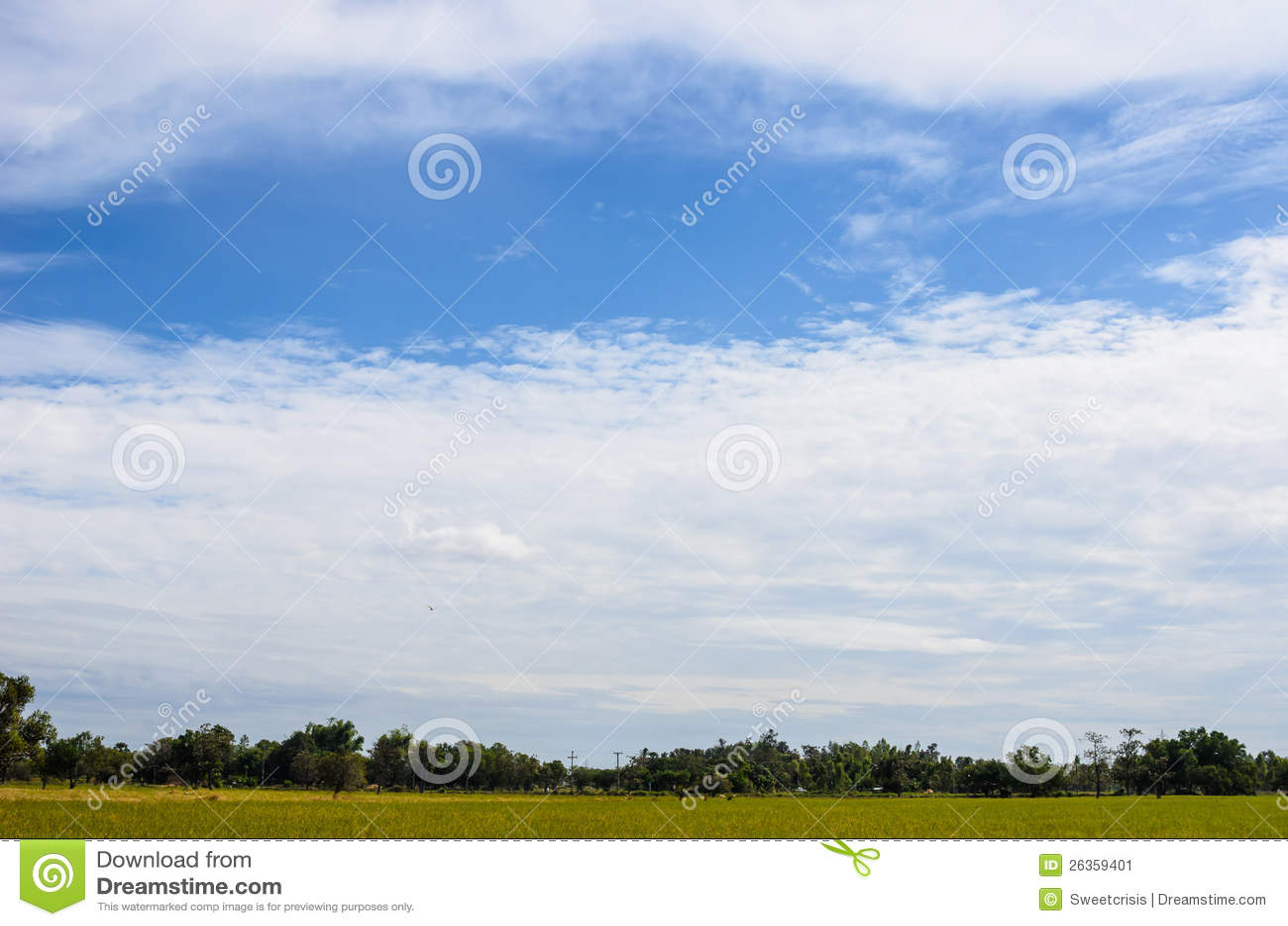 草甸和蓝天