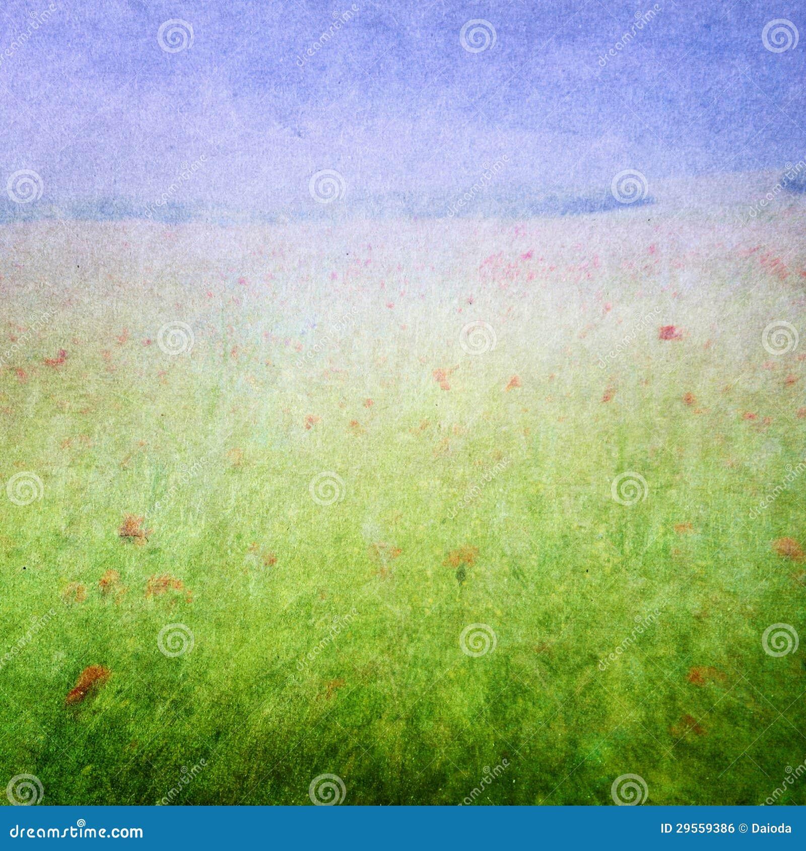 草甸开花背景