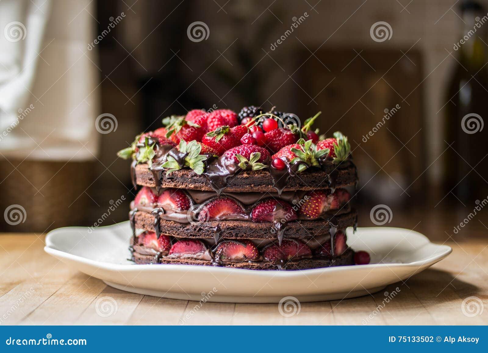 草莓蛋糕用黑莓、桑树和黑暗的巧克力