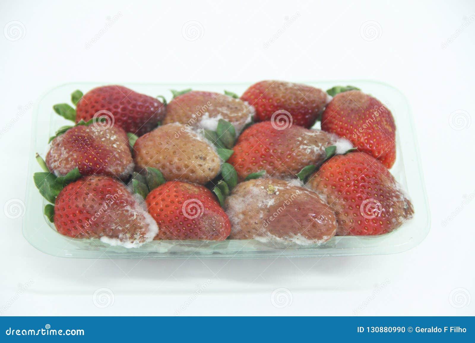 草莓食物农业被隔绝的模子可口健康果子圣保罗巴西