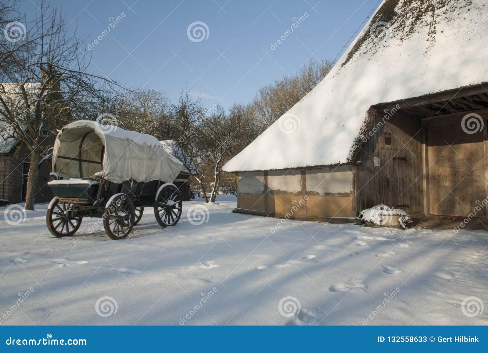 荷兰、风景和磨房冬天