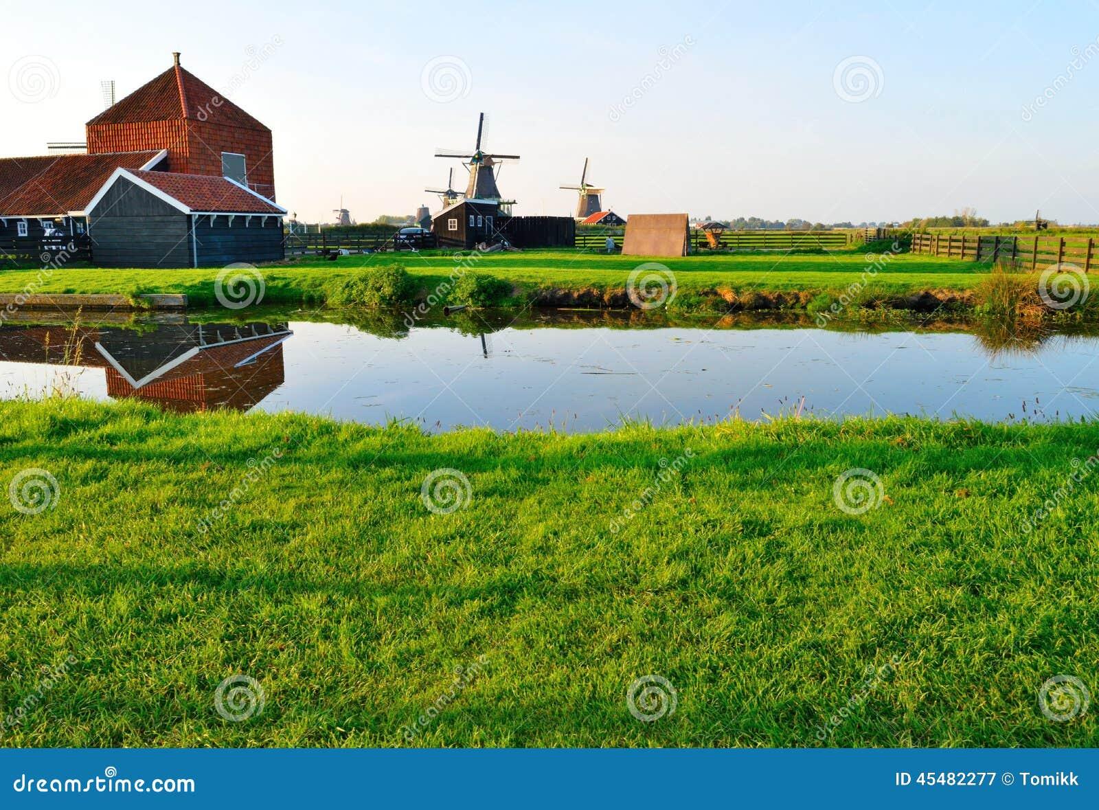 荷兰风车在夏天