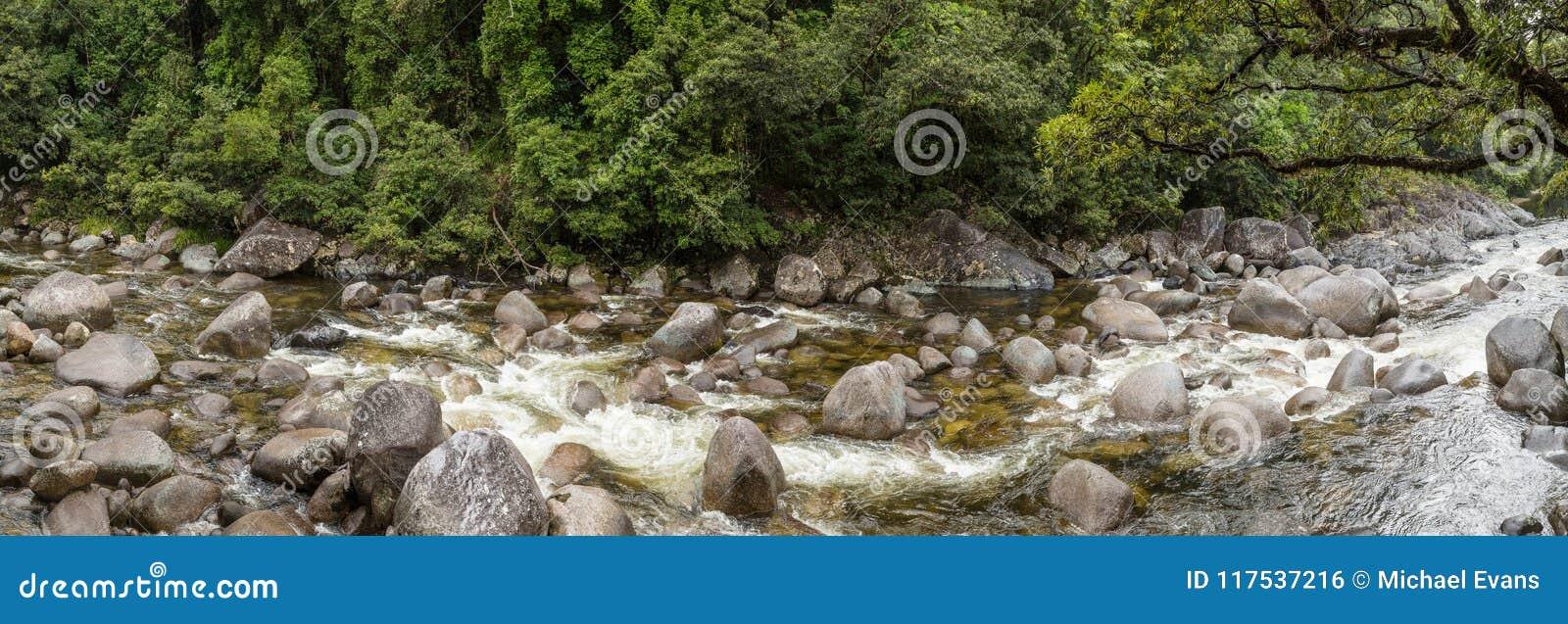 莫斯曼峡谷n Daintree雨林,昆士兰澳大利亚