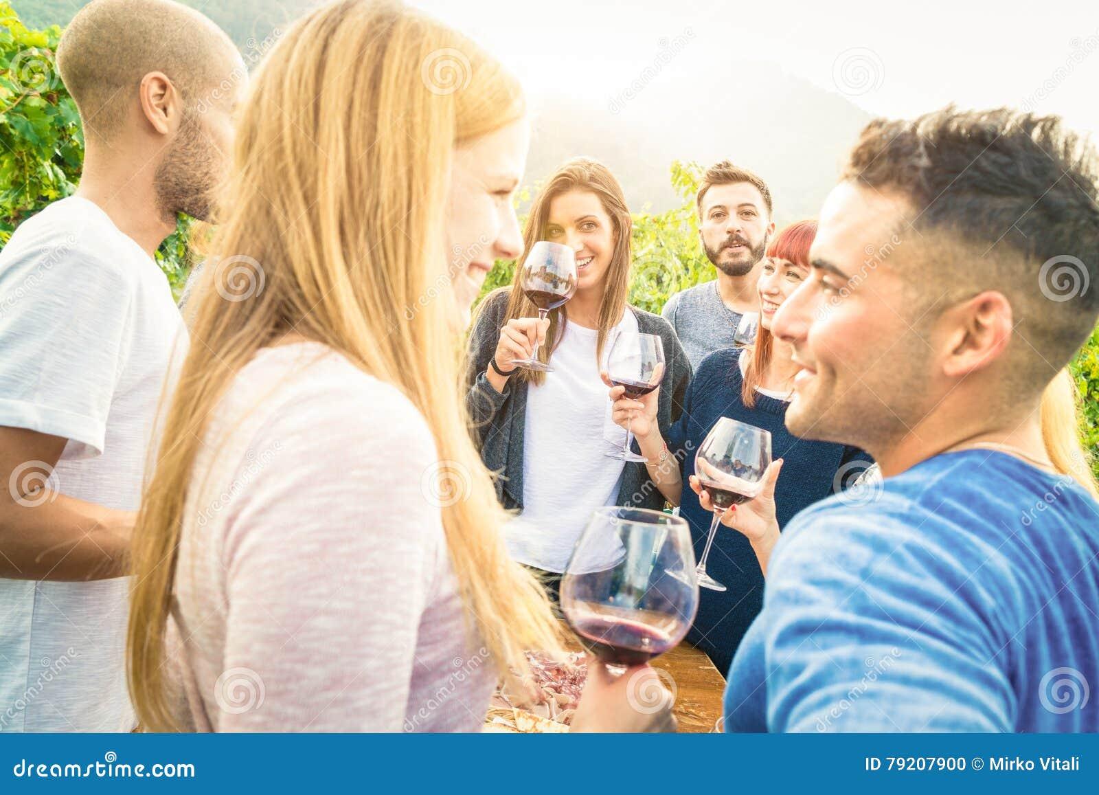 获得乐趣和喝酒的愉快的朋友在葡萄园游园会
