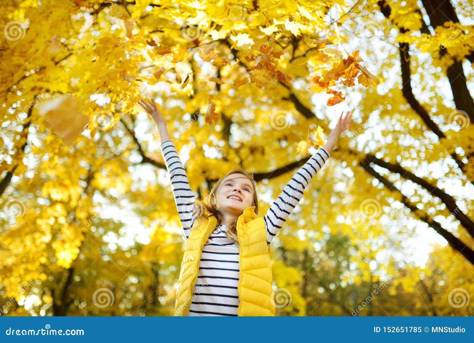 获得可爱的少女乐趣在美好的秋天天 使用在秋天公园的愉快的孩子 孩子汇聚黄色秋叶