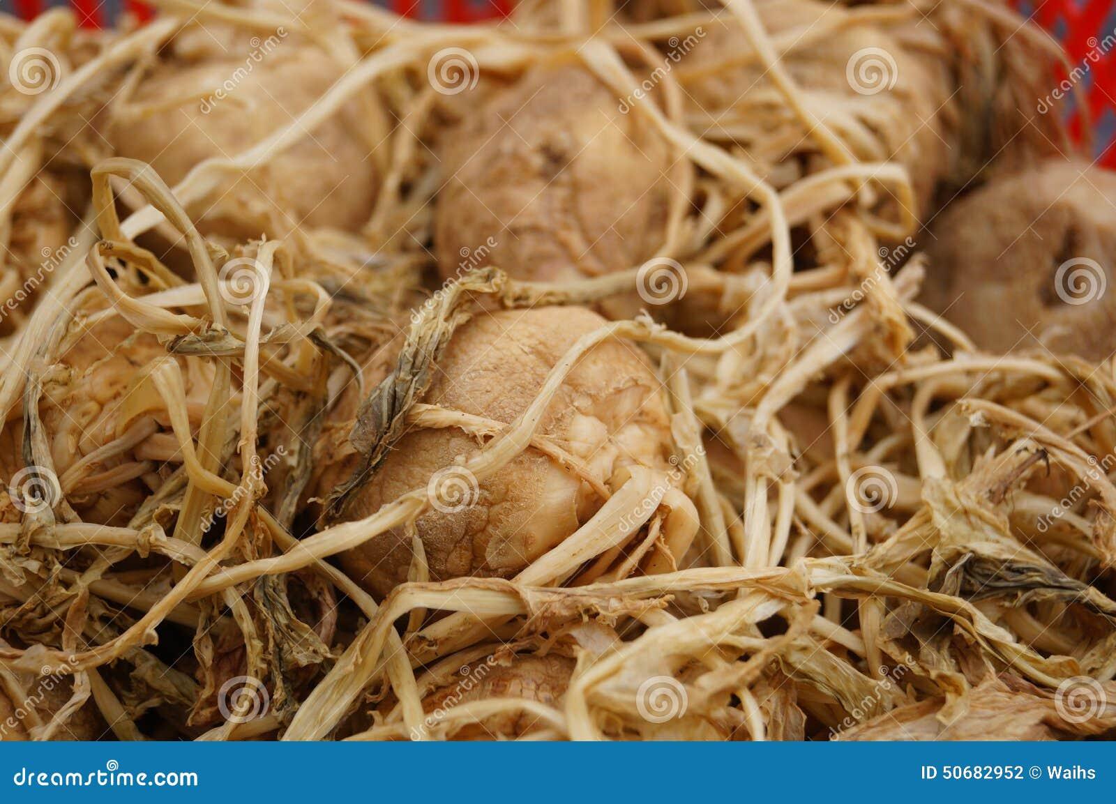 Download 菜干头 库存照片. 图片 包括有 市场, 功能, 农夫, 背包, 烘干, 仍然, 食物, 生活, 蔬菜, 对象 - 50682952