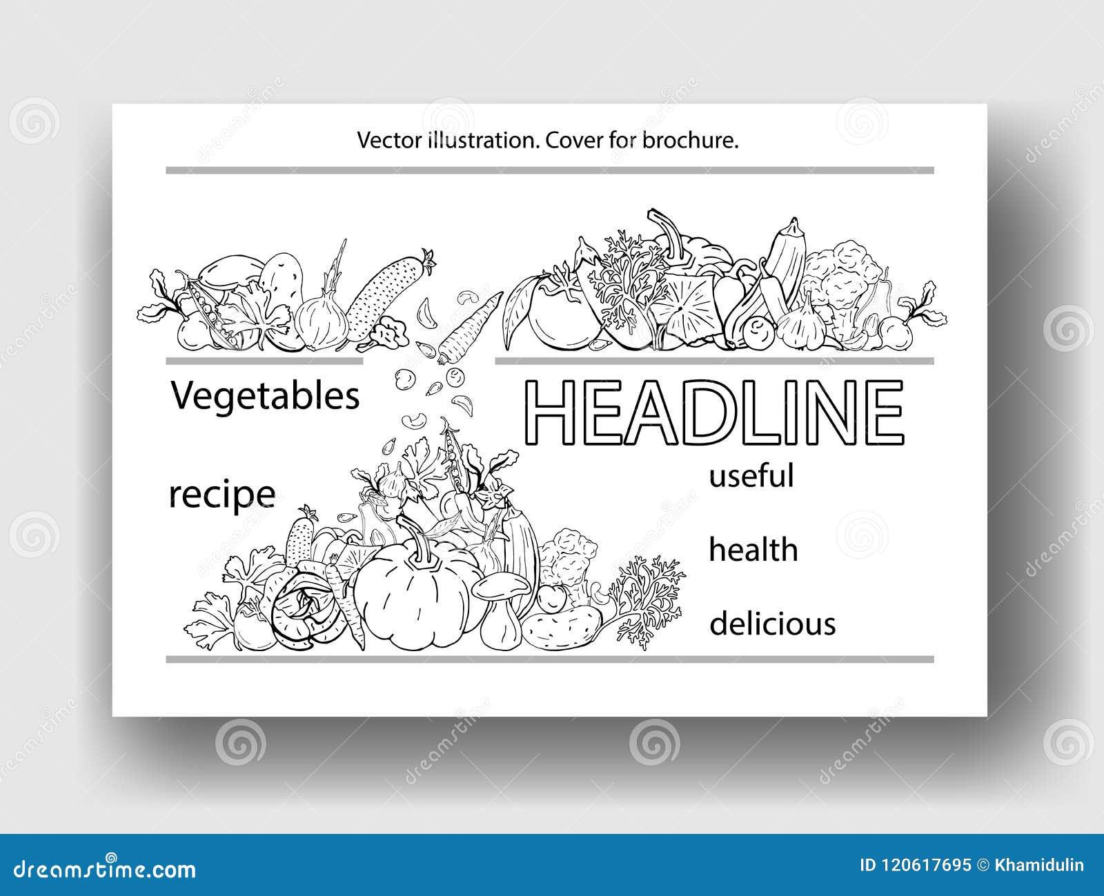 菜的传染媒介例证 小册子的,海报,横幅,明信片盖子模板