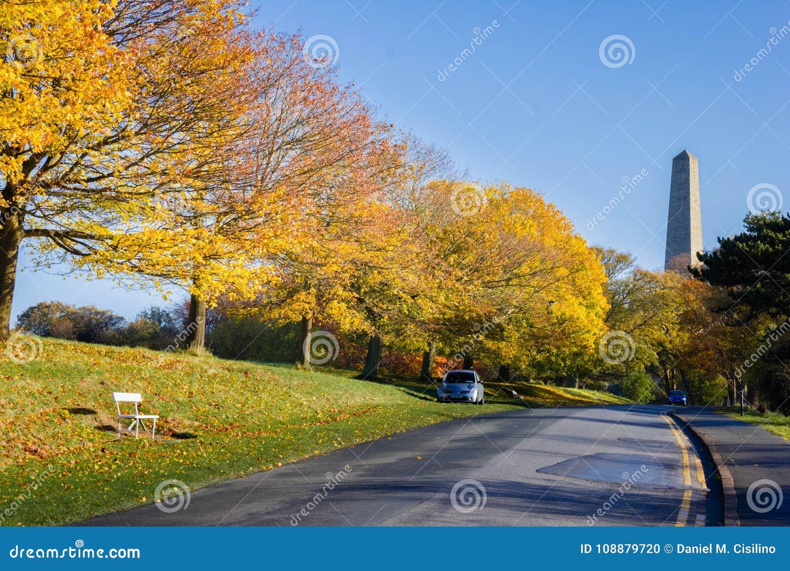 菲尼斯公园和惠灵顿纪念碑 都伯林 爱尔兰