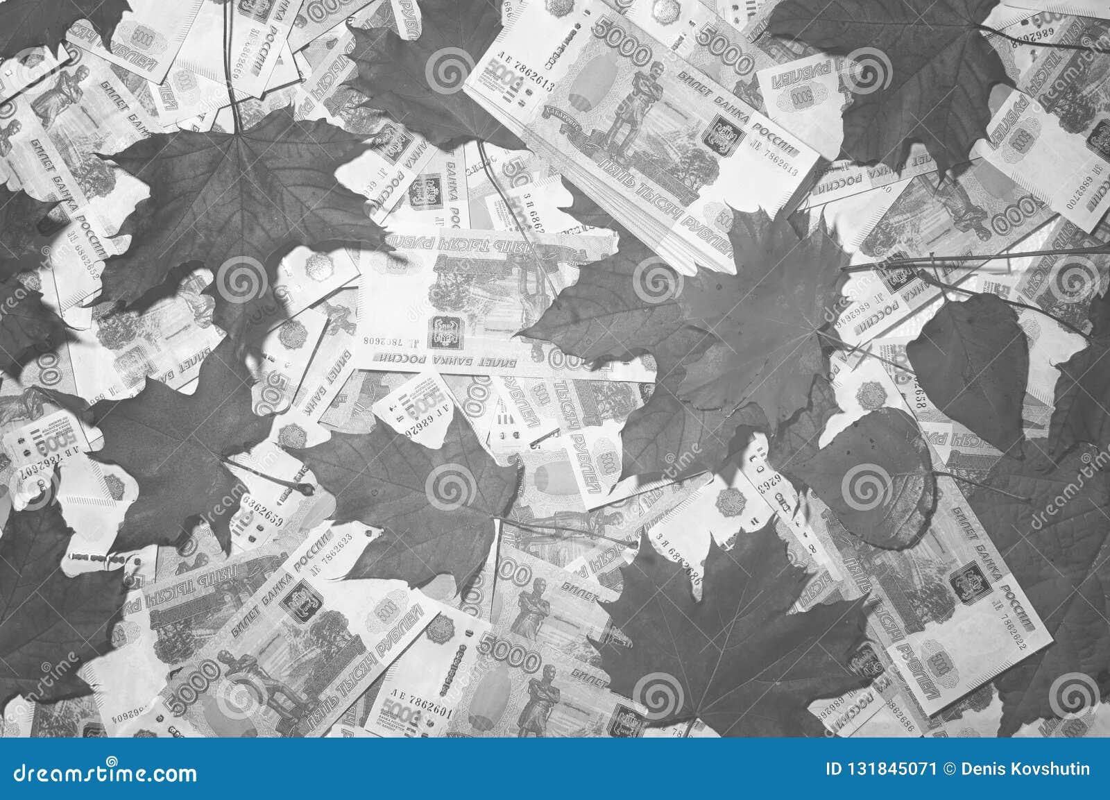 落叶和五张第一千个张票据钞票背景  百万俄罗斯卢布 下跌的货币路线的概念