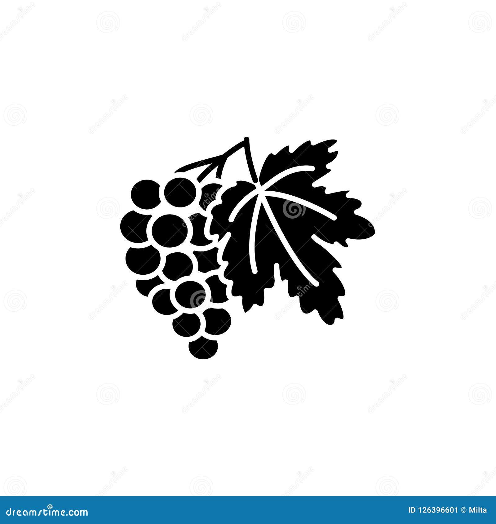 葡萄果子的黑&白色传染媒介例证与叶子的 平面