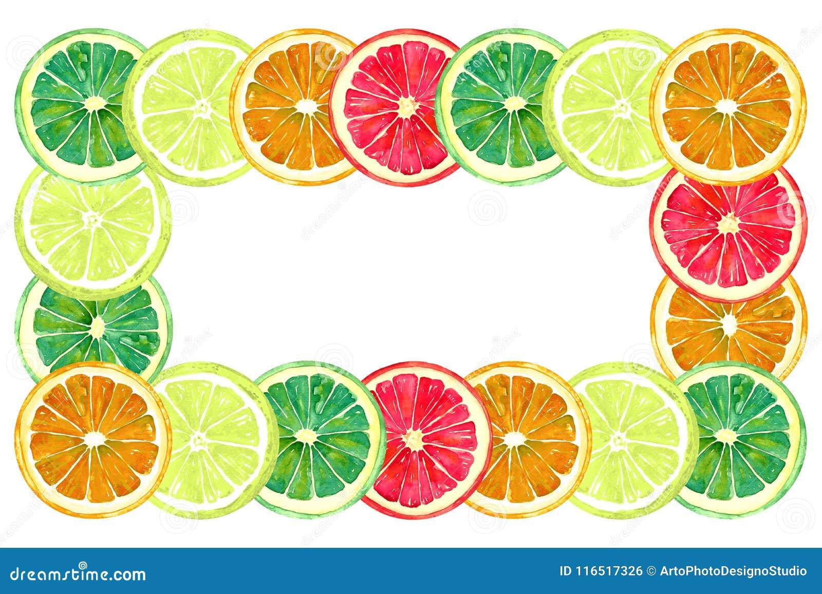 葡萄柚、桔子、石灰和柠檬、水平的框架的贺卡或横幅设计,白色背景