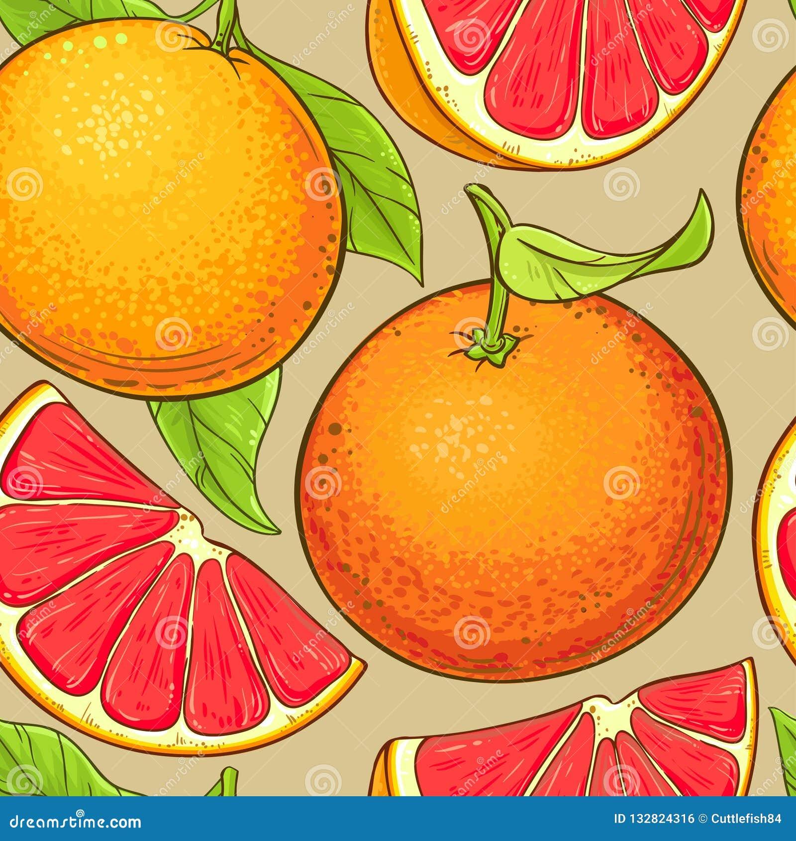 葡萄柚果子导航样式