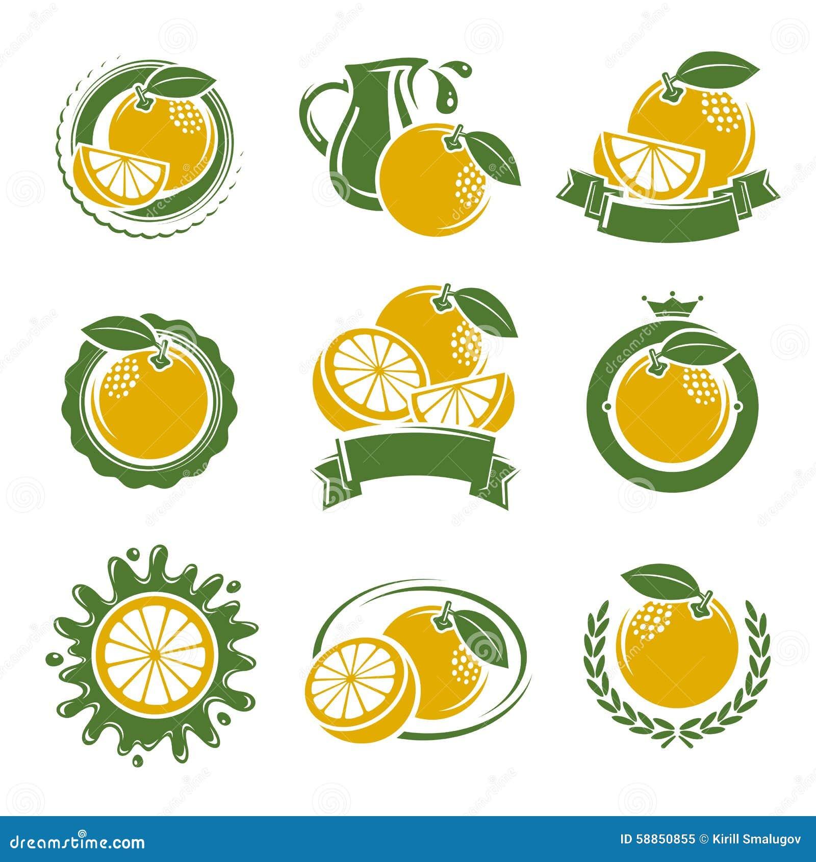 葡萄柚标签和元素集 向量