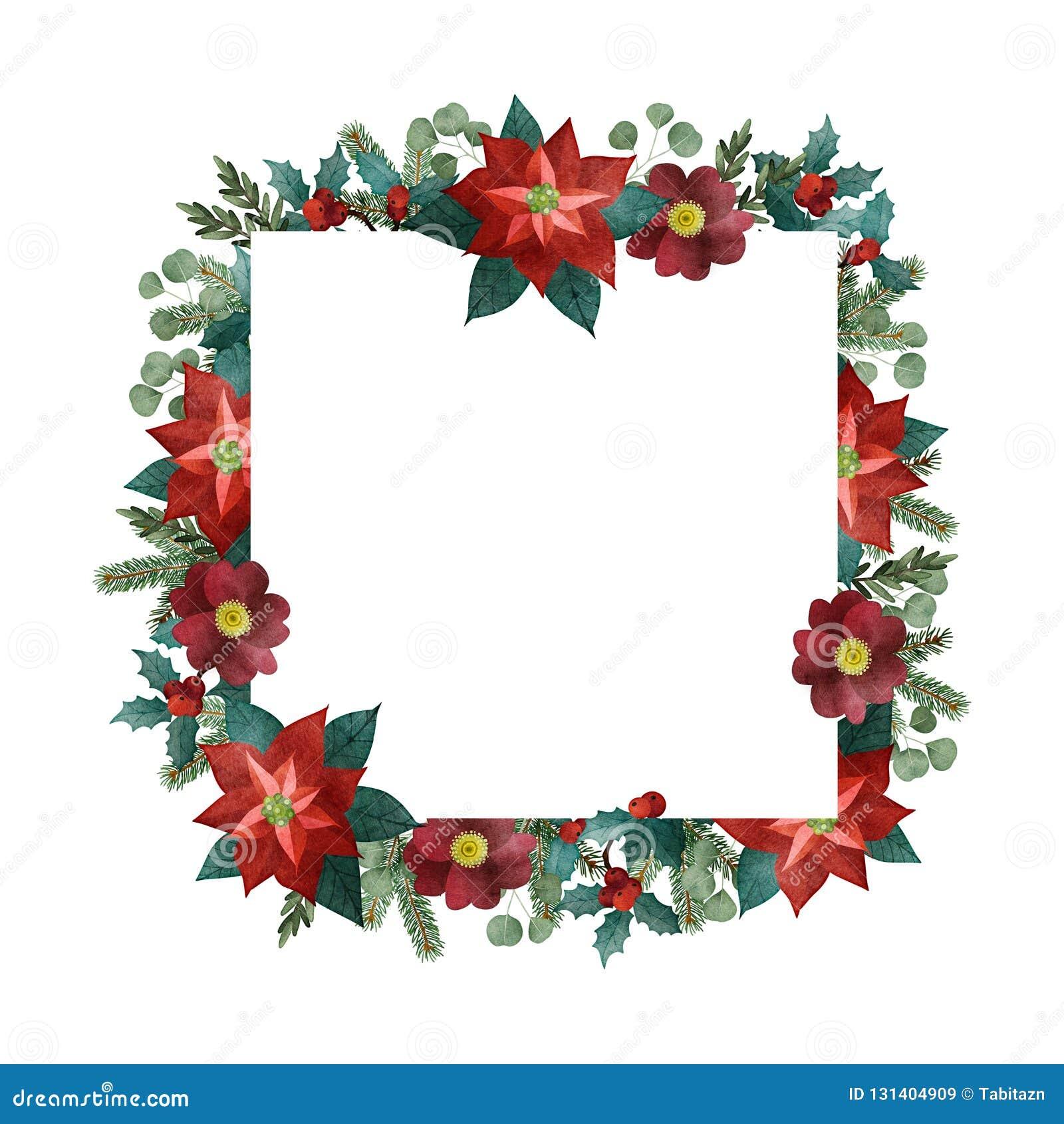 葡萄酒圣诞节贺卡,邀请 水彩方形的框架,边界 杉树,玉树分支,一品红