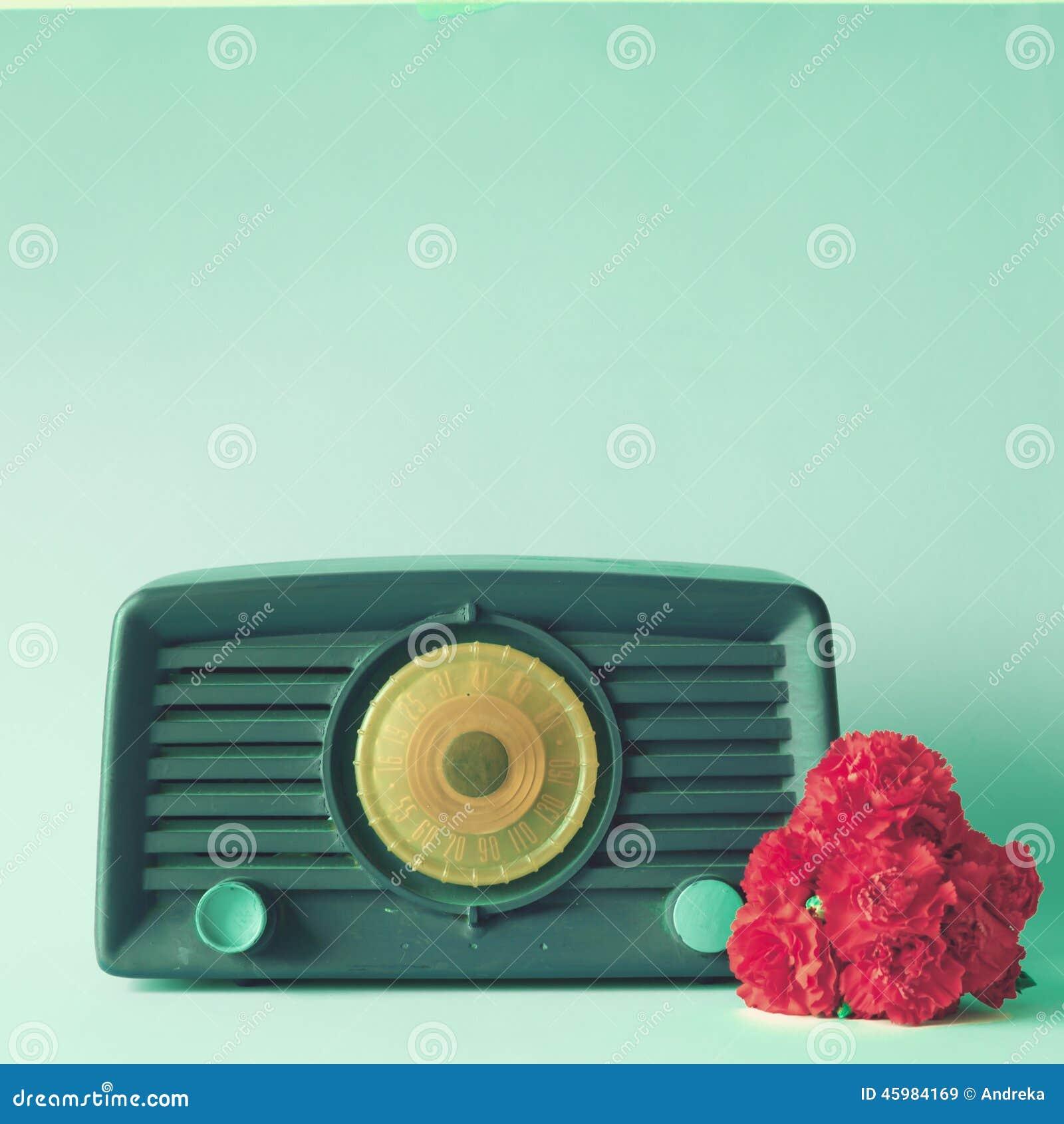 葡萄酒收音机和花
