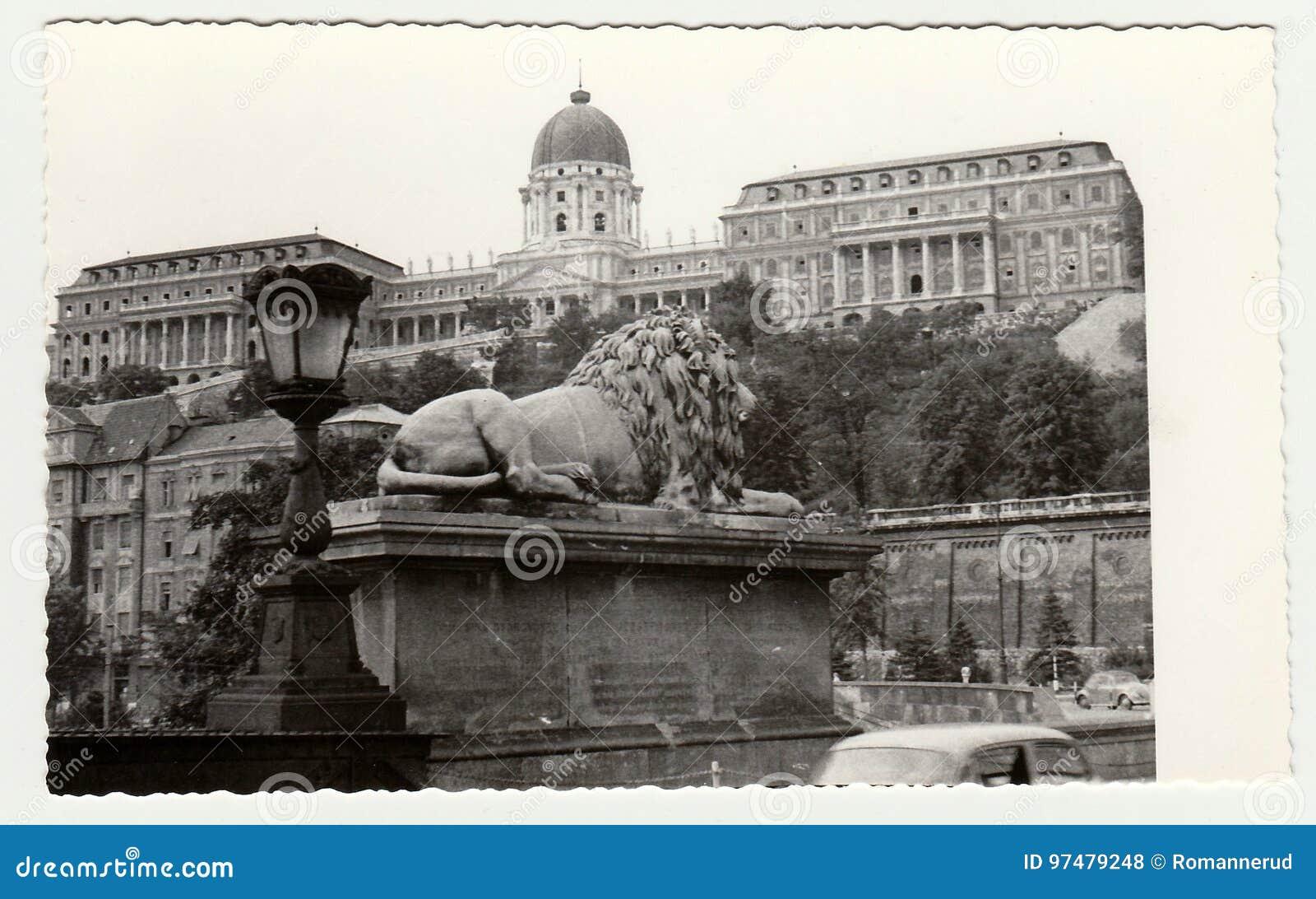 葡萄酒照片在匈牙利显示布达佩斯布达城堡王宫