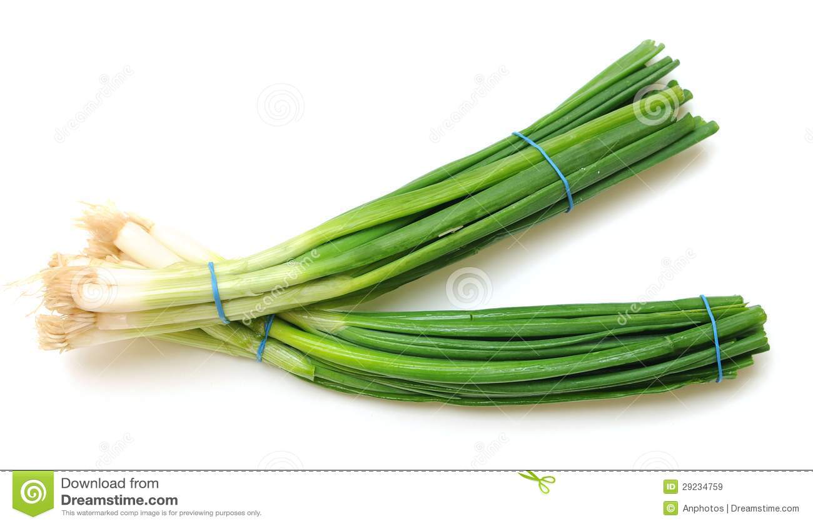图片 包括有 绿色, 新鲜, 结构树, 叶子, 厨师, 食物, 厨房, 本质