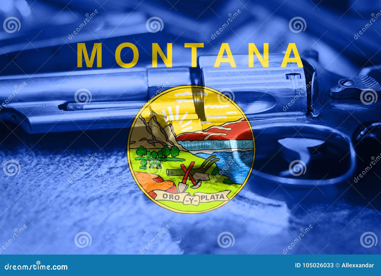 蒙大拿旗子U S 状态枪枝管制美国 美国枪法律