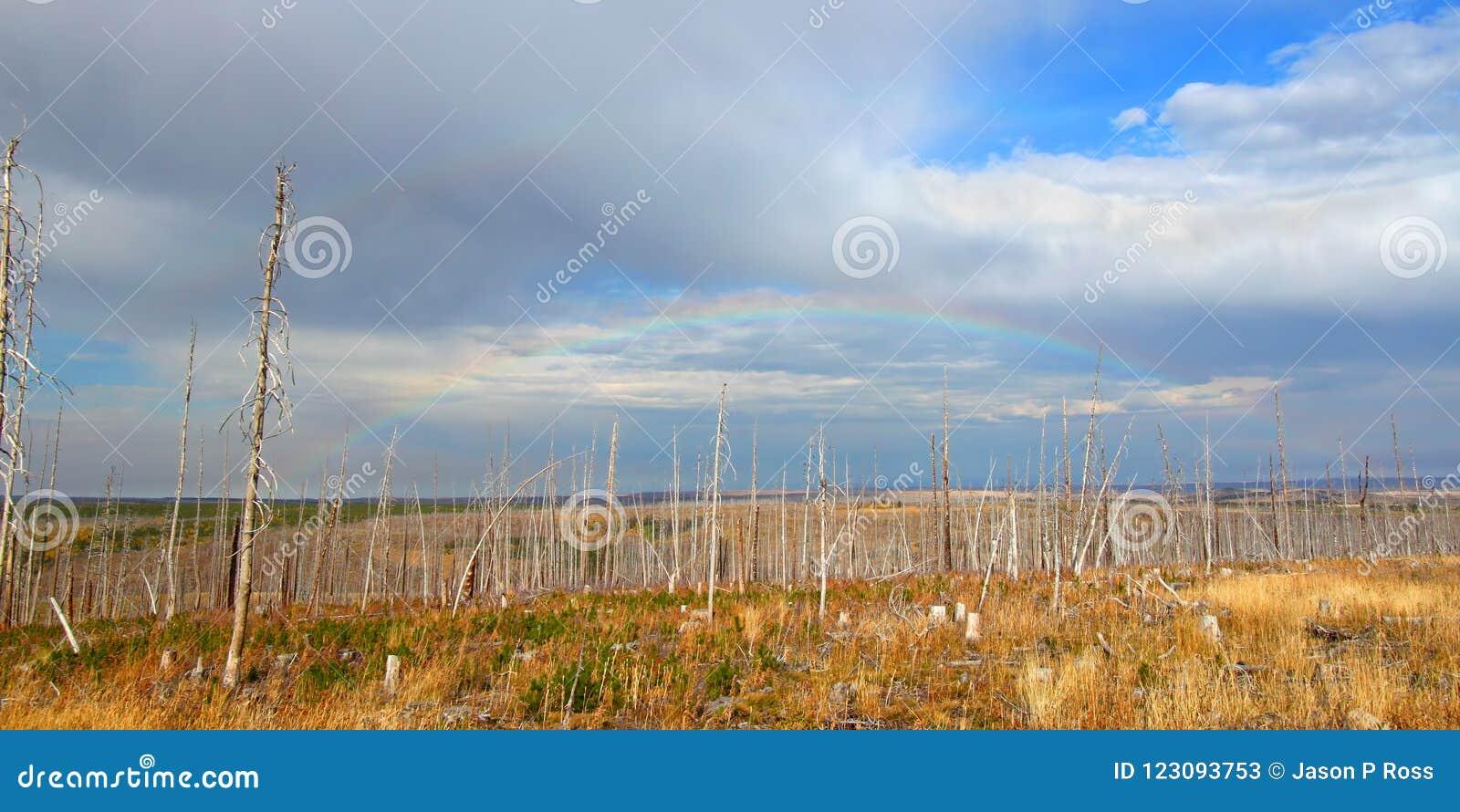 蒙大拿秋天乡下风景