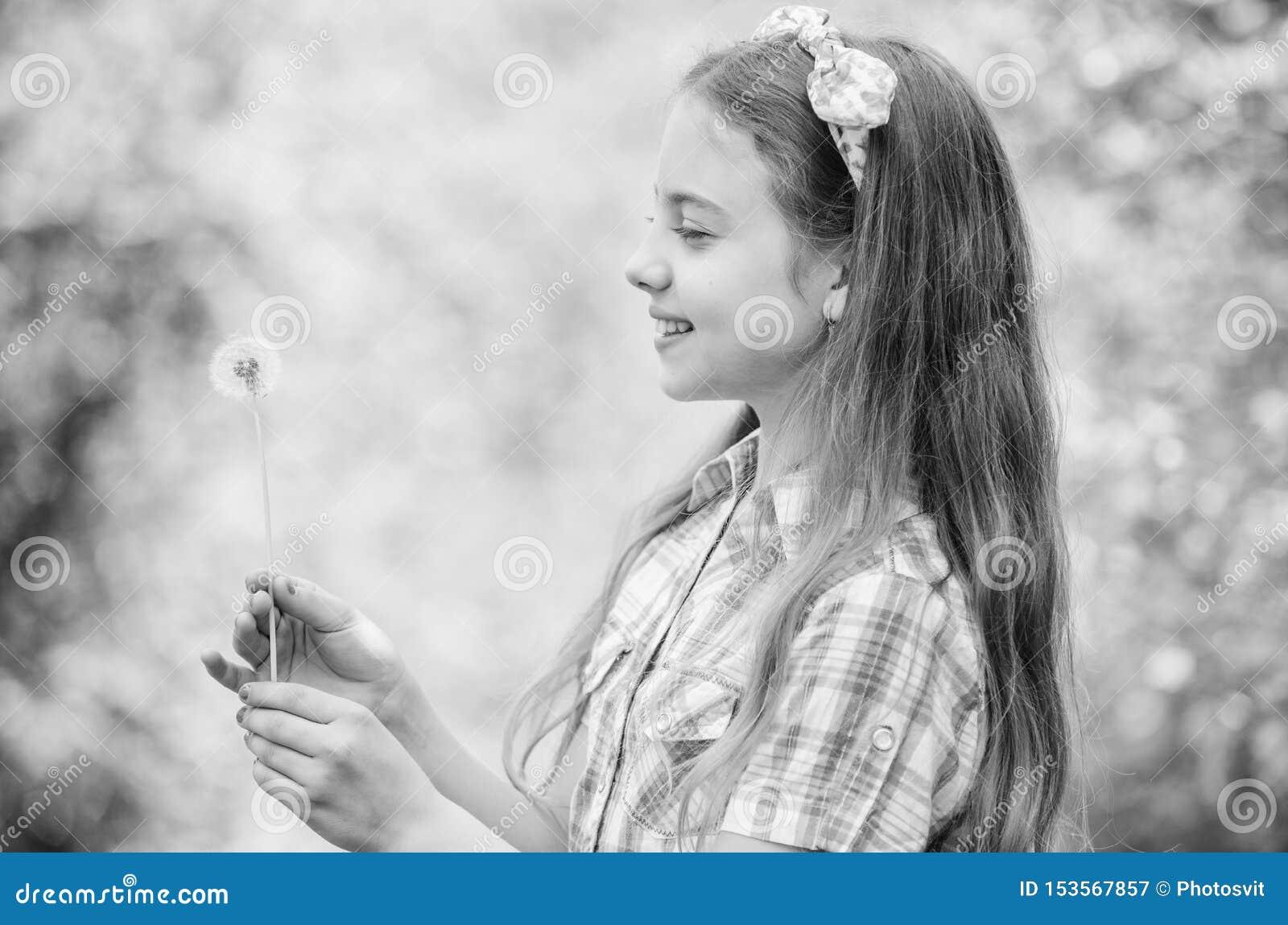 蒲公英充分的象征主义 夏令时乐趣 关于蒲公英的民间传说信仰 做愿望和吹的女孩土气样式