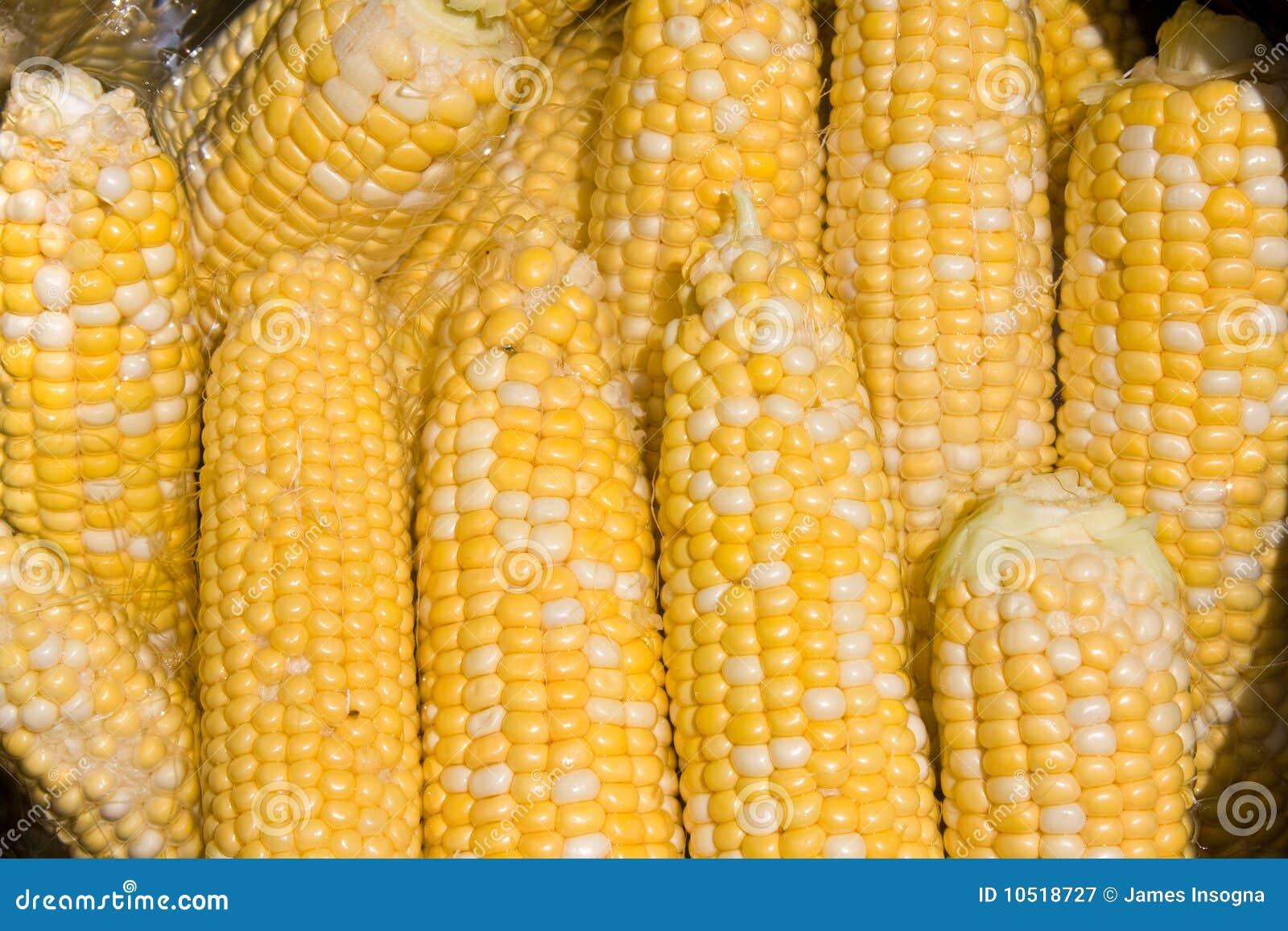 蒲式耳玉米